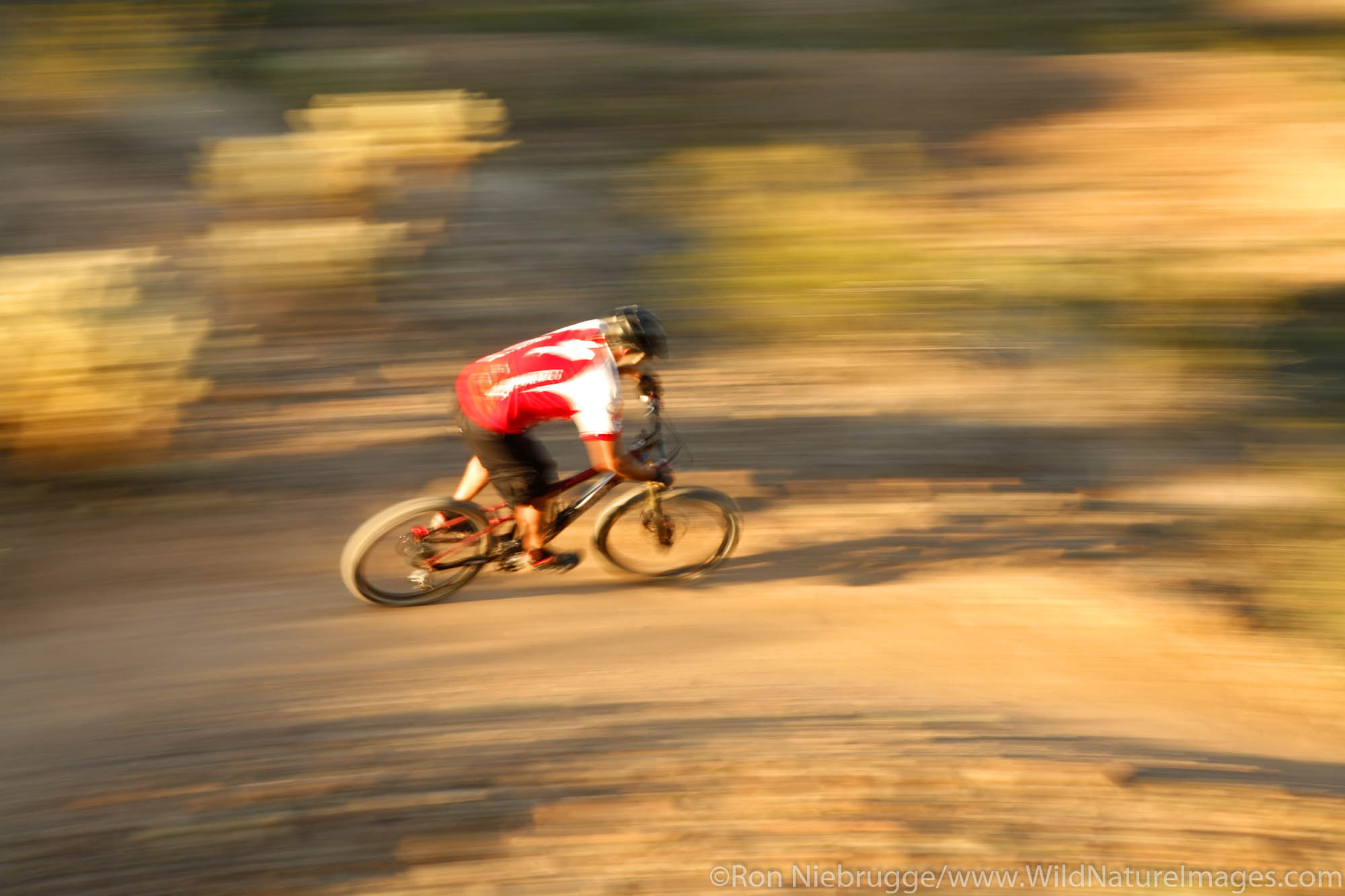 A mountain biker on the Technical Loop, one of the competitive race tracks at McDowell Mountain Regional Park near Phoenix, Ariziona...