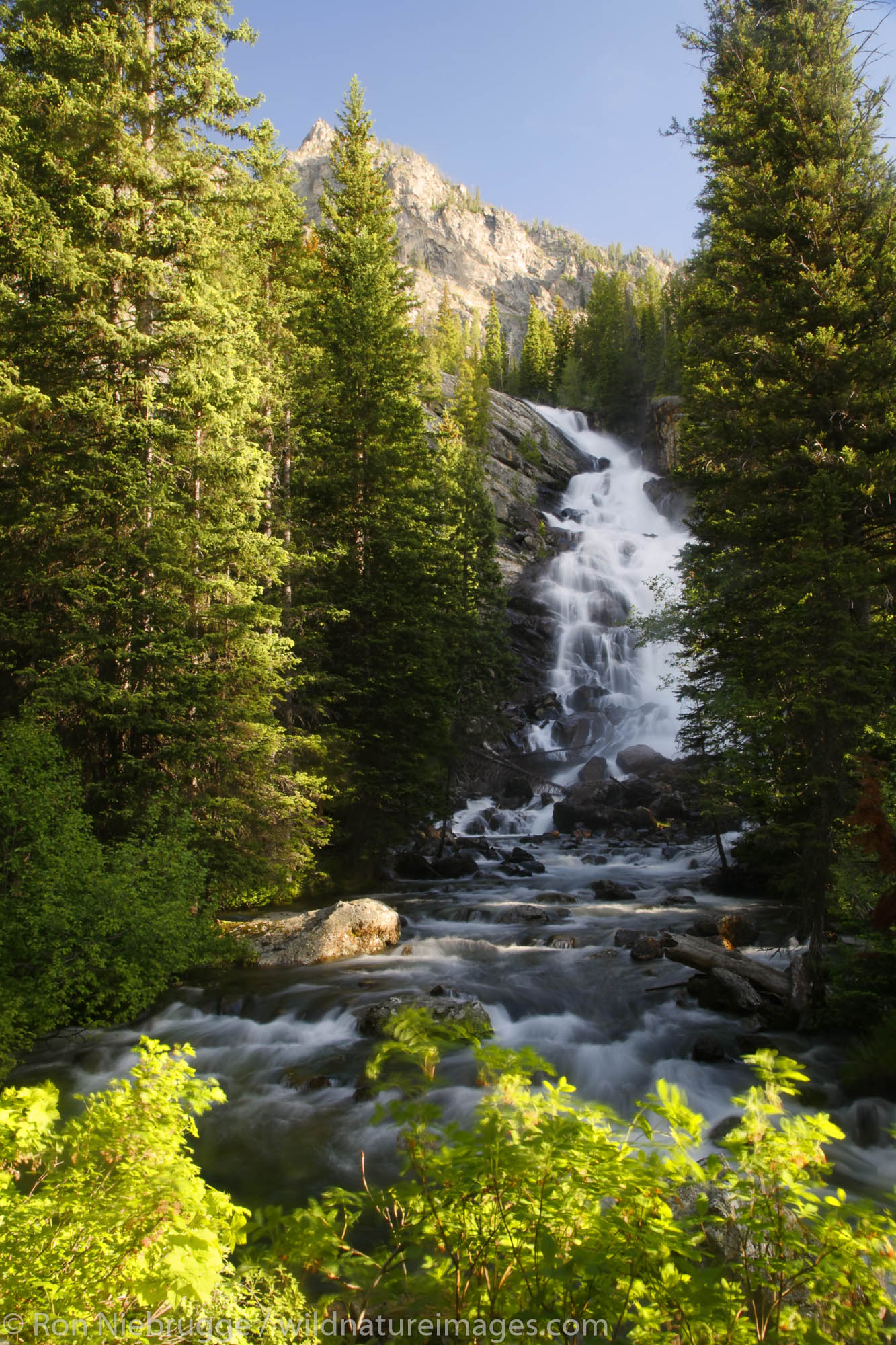Grand Teton National Park, Wyoming, photo