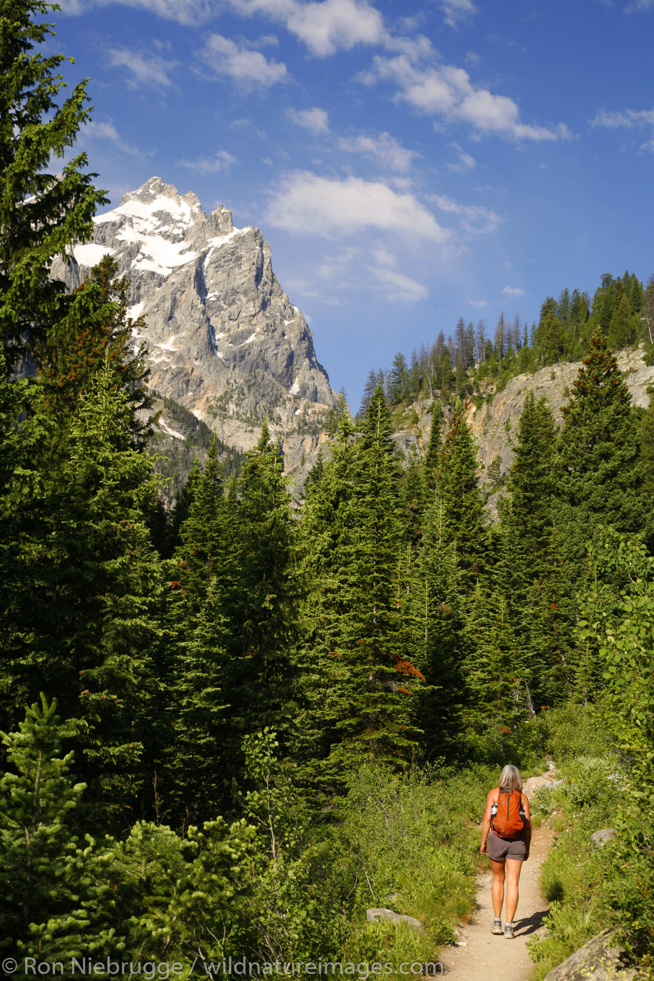 A hiker on the Cascade Canyon Trail, Grand Teton National Park, Wyoming. (MR)