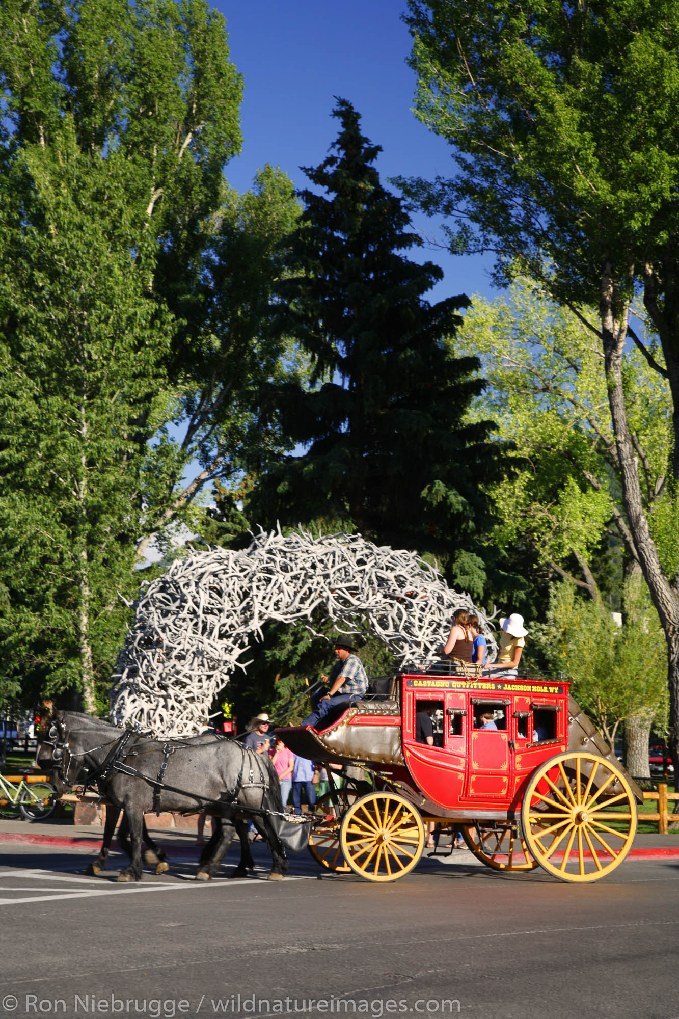 A stagecoach passes by the elk antler arch, downtown Jackson, near Grand Teton National Park, Wyoming.