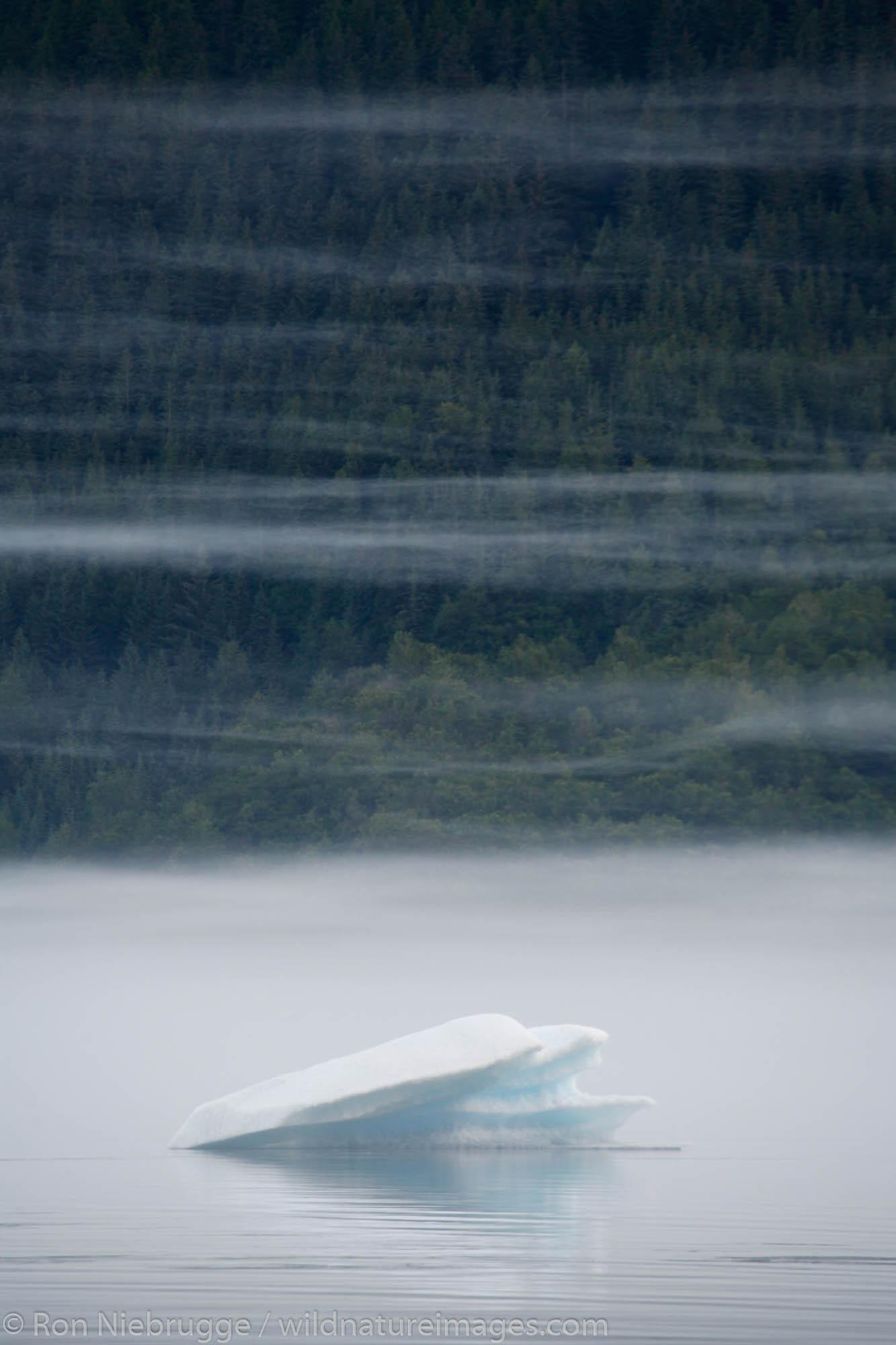 Fog and icebergs on Mendenhall Lake near Juneau, Alaska.