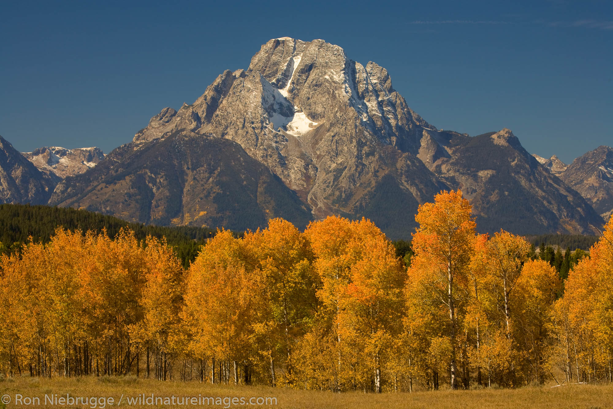 Mount Moran from Oxbow Bend, Grand Teton National Park, Wyoming.