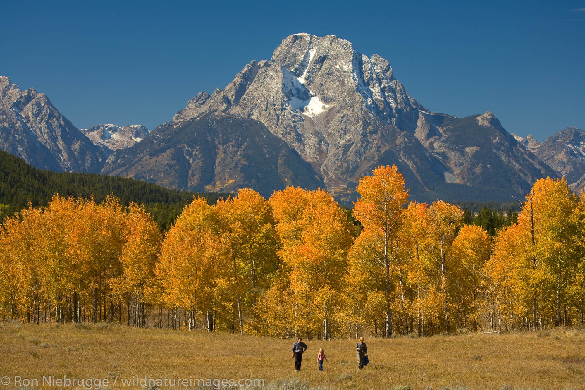 Visitors and Mount Moran from near Oxbow Bend, Grand Teton National Park, Wyoming.