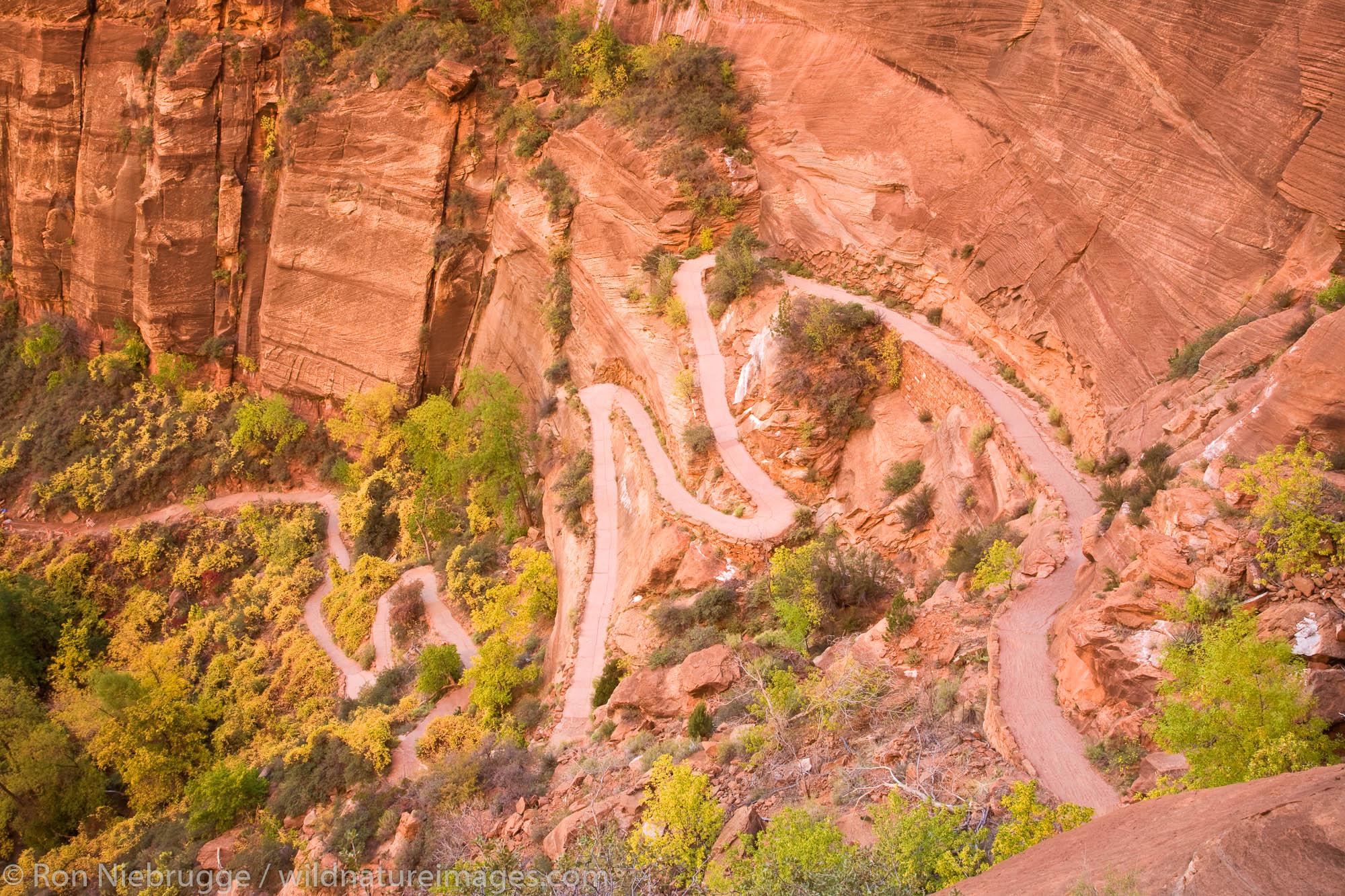 Angels Landing trail, Zion National Park, Utah.