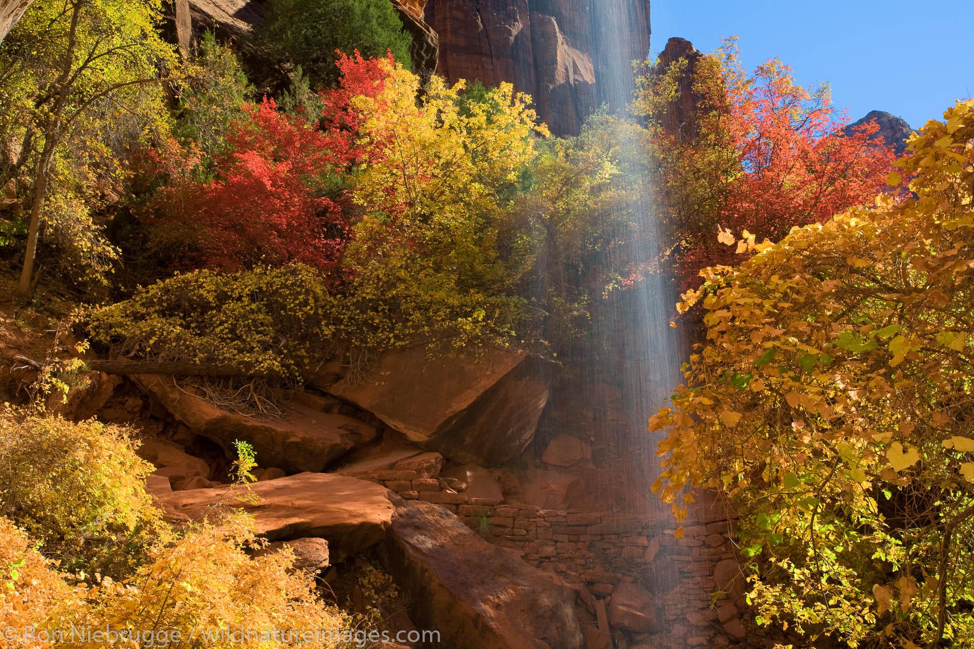 Emerald Pools, Zion National Park, Utah.