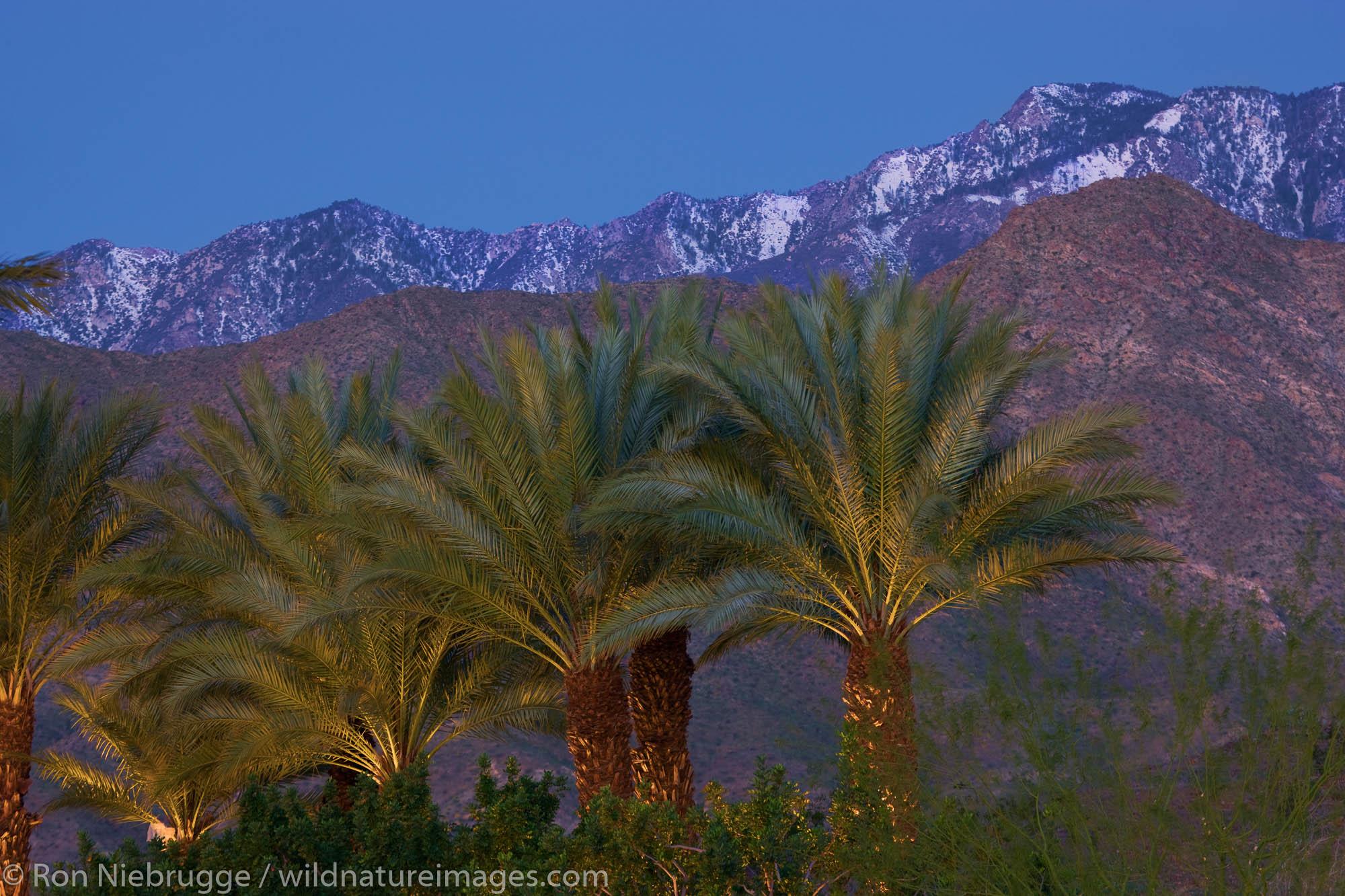 Palm Springs, California, photo