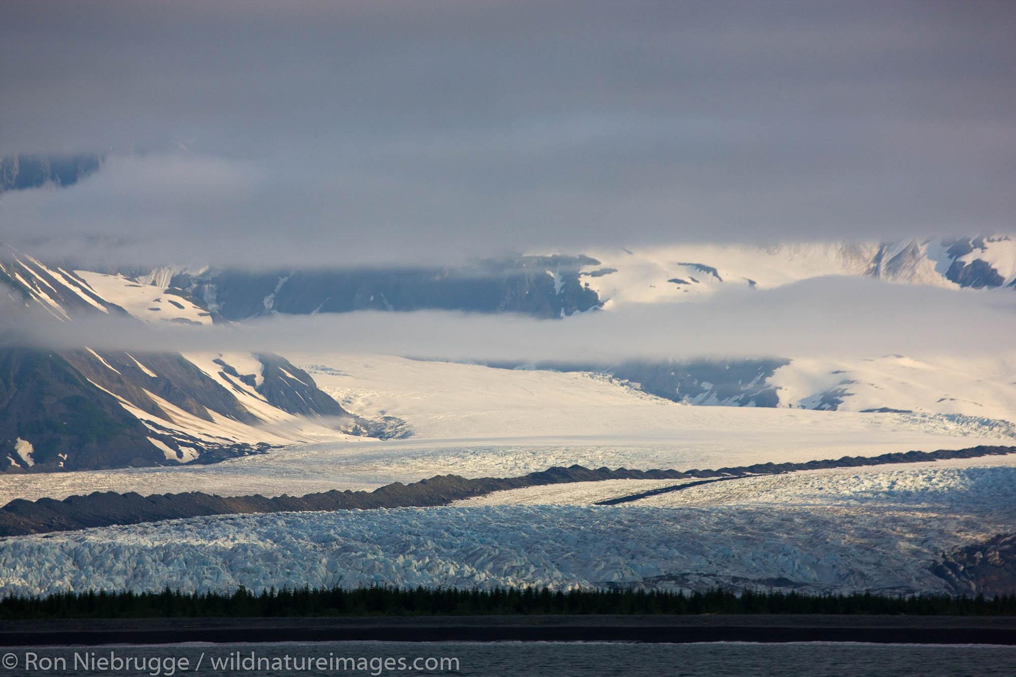 Bear Glacier, Kenai Fjords National Park, Alaska.