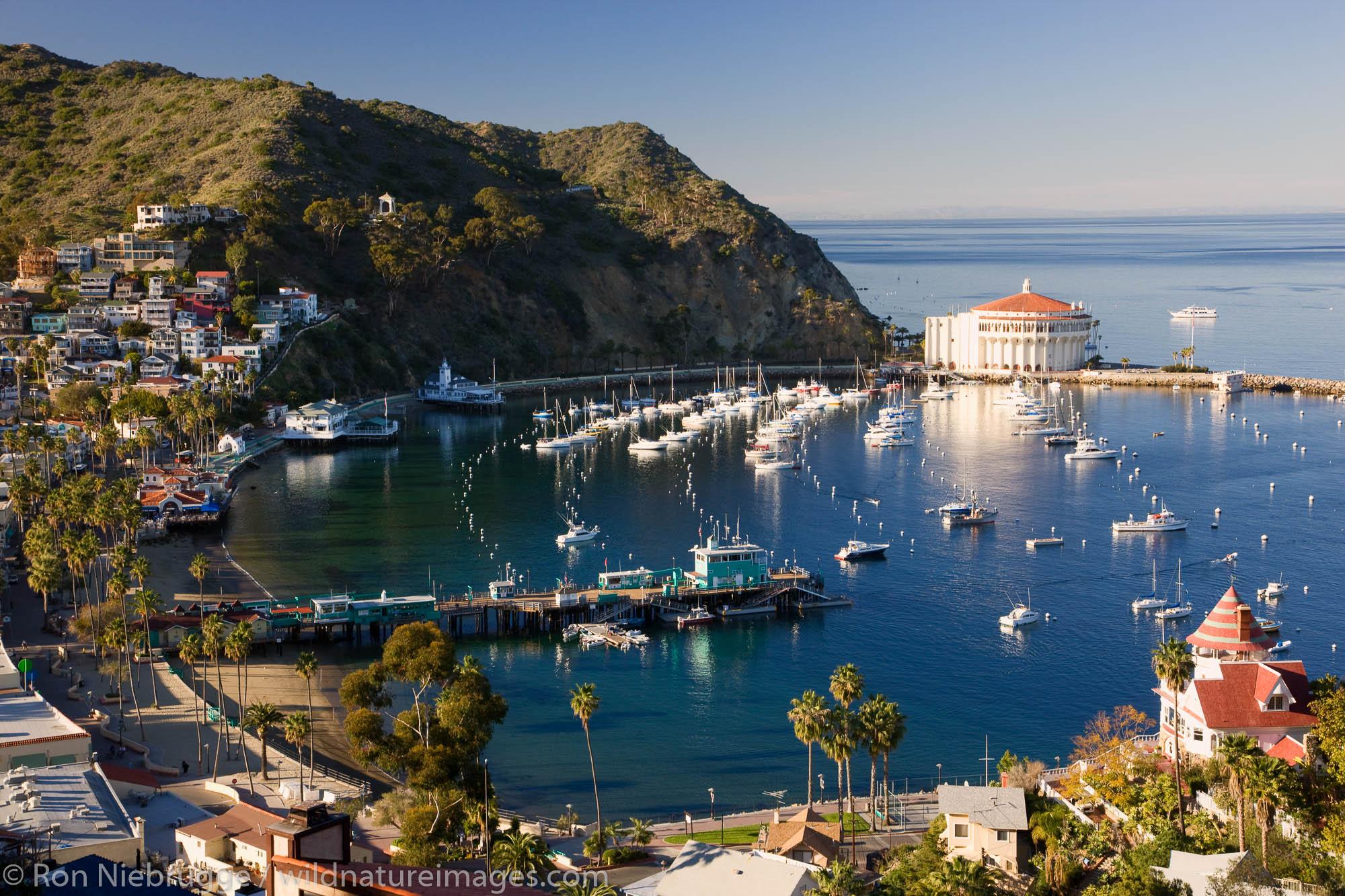 Catalina Island, California, photo