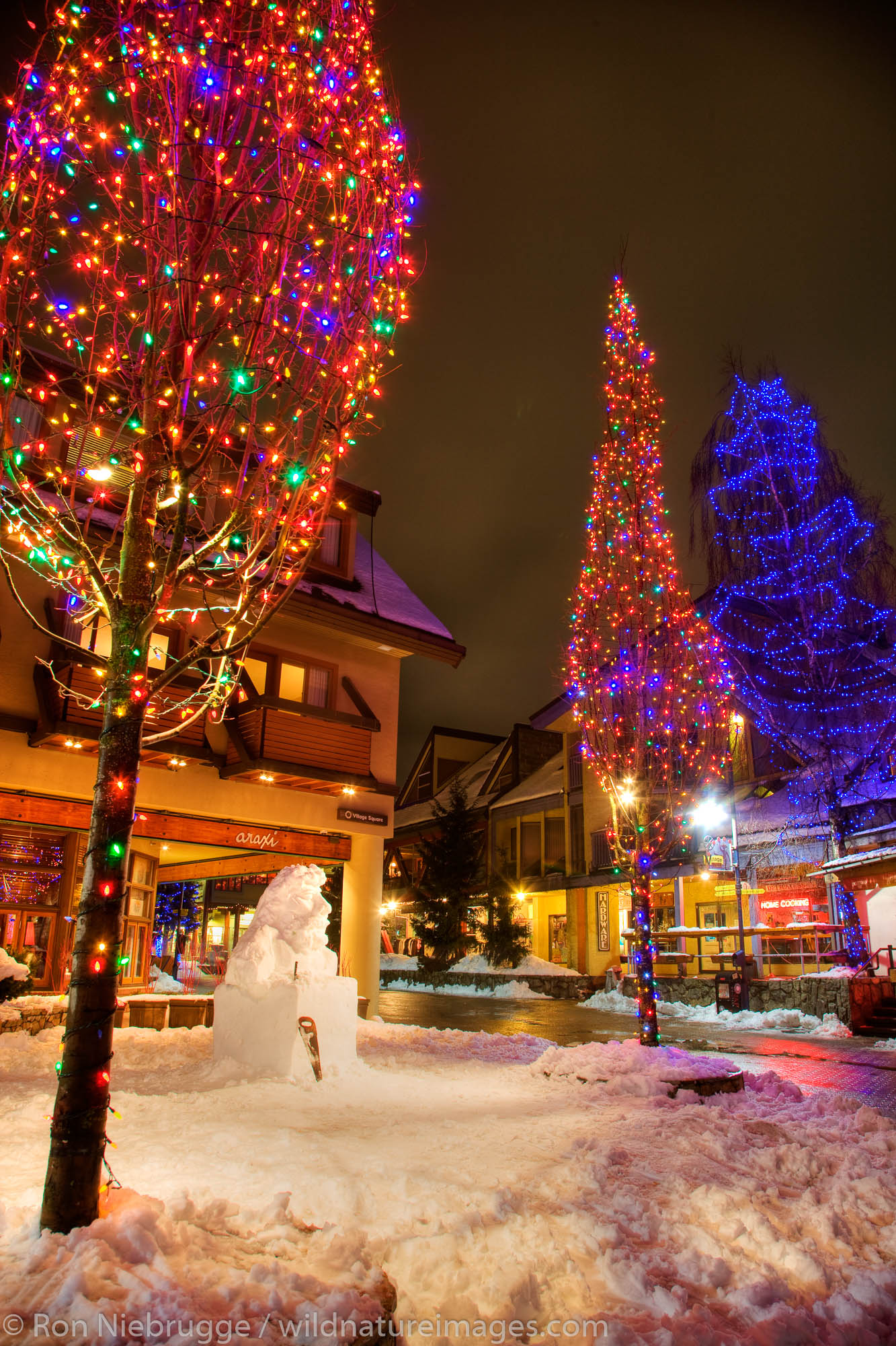 The town of Whistler, one of the host venues for the 2010 Vancouver Winter Olympics, British Columbia, Canada.