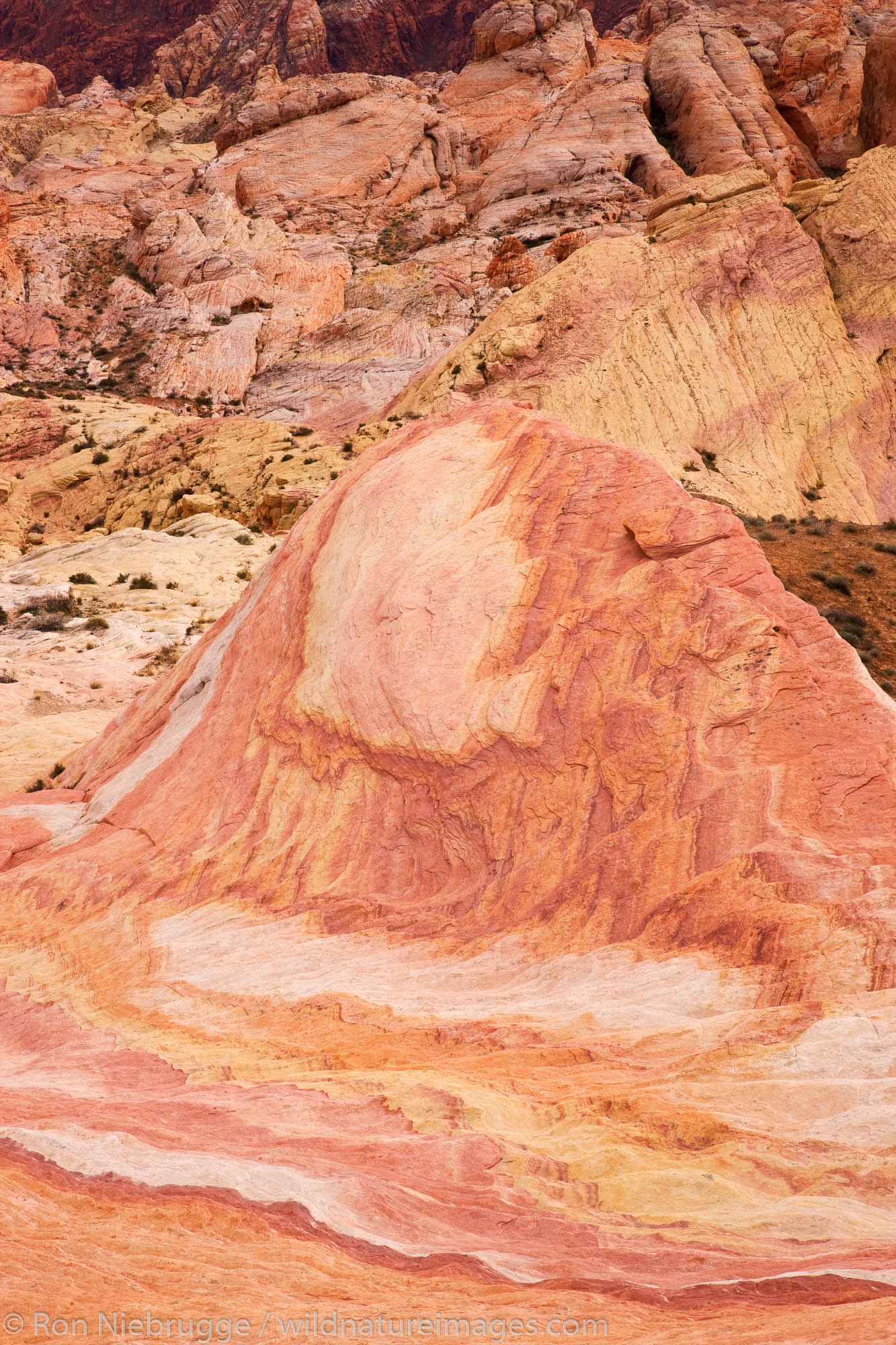 Valley of Fire State Park, about a hour from Las Vegas, Nevada.