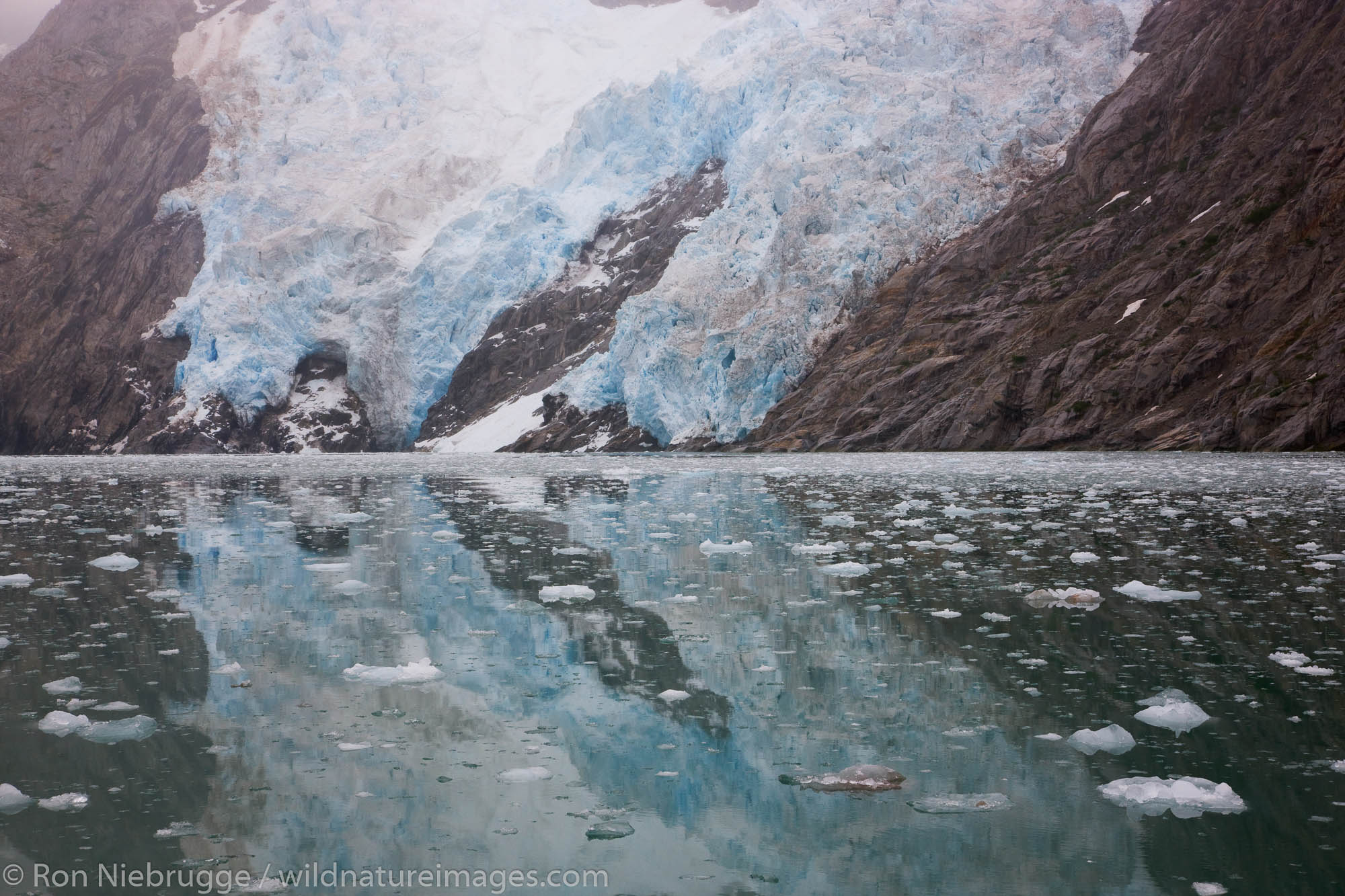Northwestern Glacier, Northwestern Fjord, Kenai Fjords National Park, Alaska.