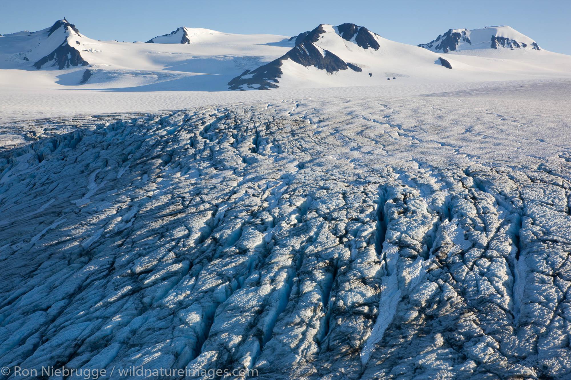 Kenai Fjords National Park, Alaska, harding icefield , photo