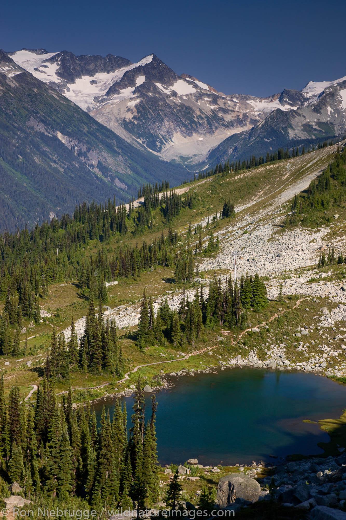 Views from the Harmony Lake Trail, Whistler Mountain, Whistler, British Columbia, Canada.