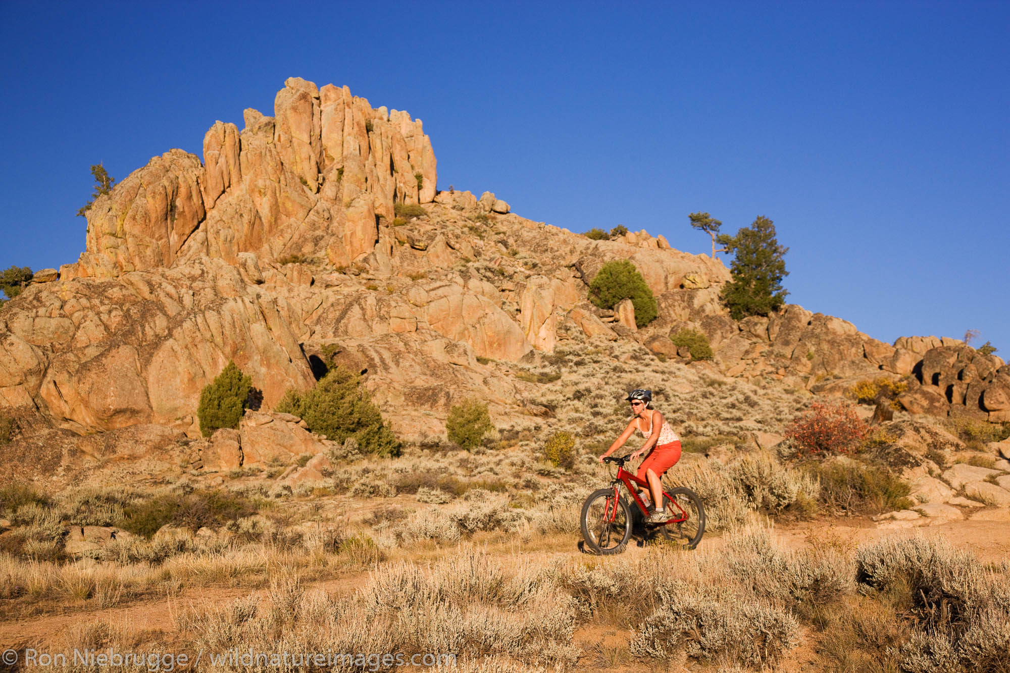 Mountain biking on the Hartman Rocks Recreation Area trails, Gunnison, Colorado.  (model released)
