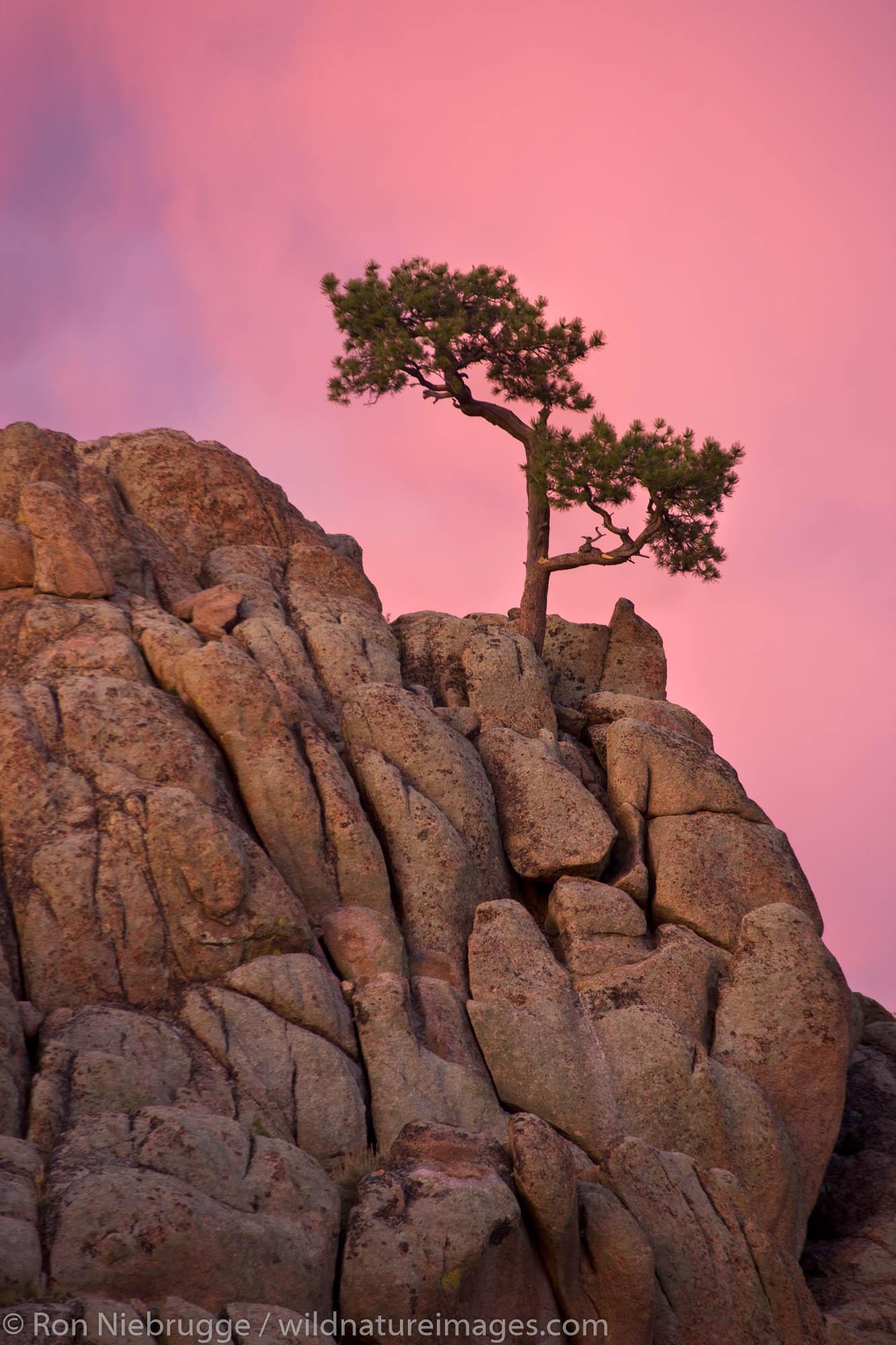 Hartman Rocks Recreation Area, Gunnison, Colorado.