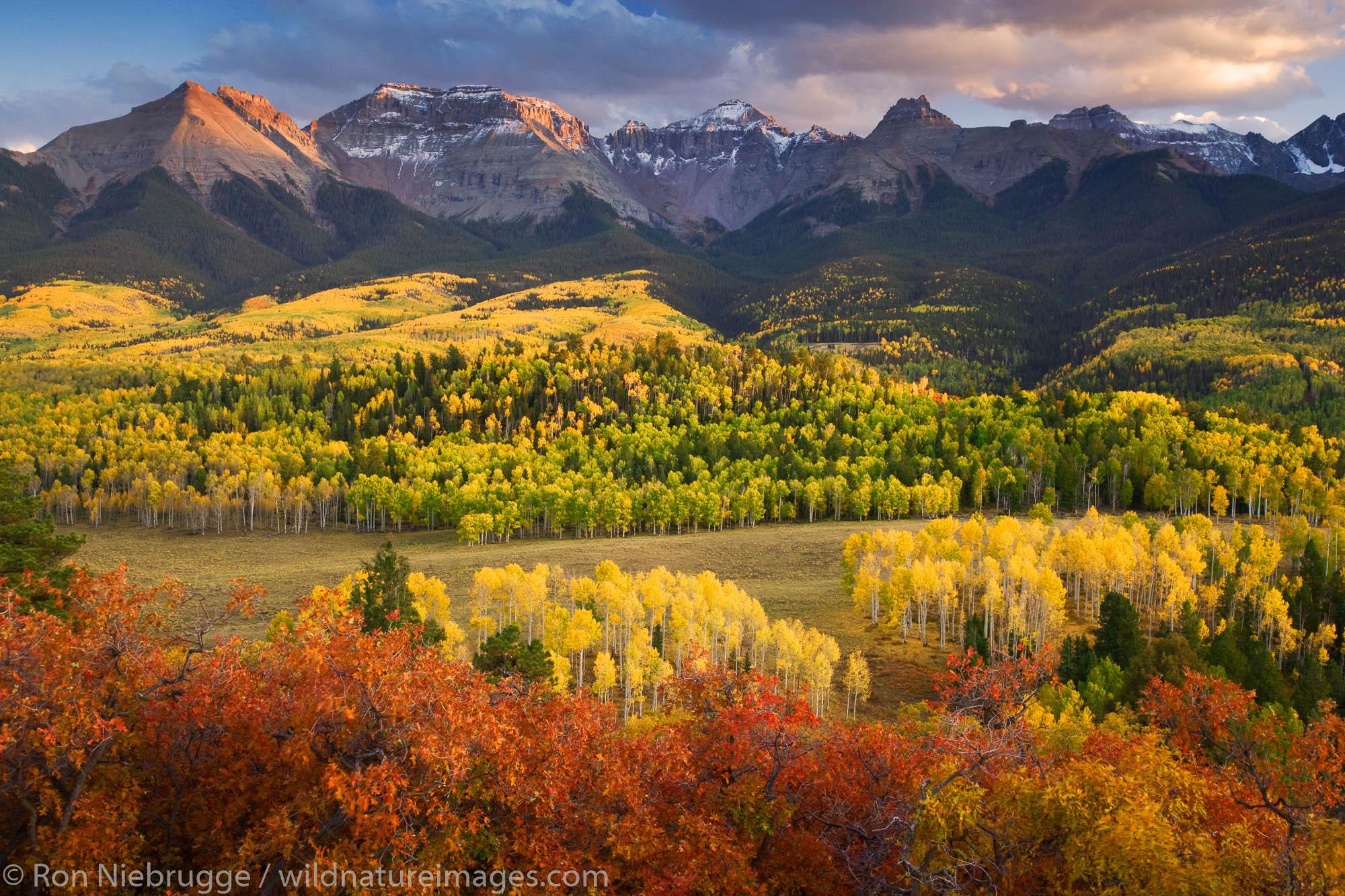 Autumn colors and the Sneffels Range, San Juan Mountains, Colorado.