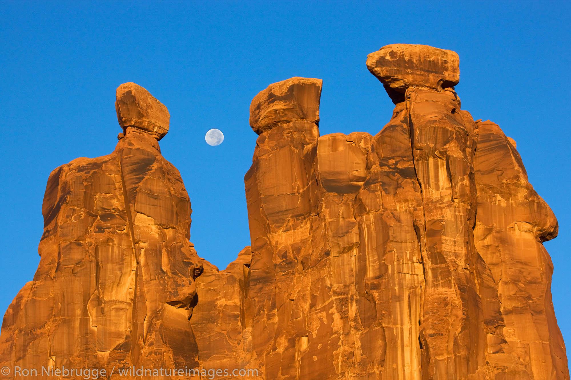 Near full moon along with the Three Gossips, Arches National Park, near Moab, Utah.