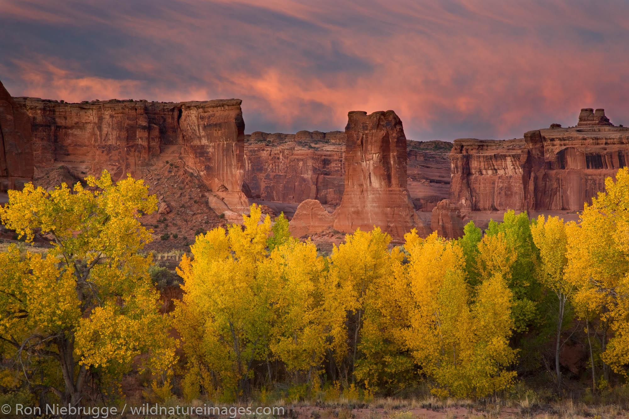 Courthouse Wash, Arches National Park, near Moab, Utah.