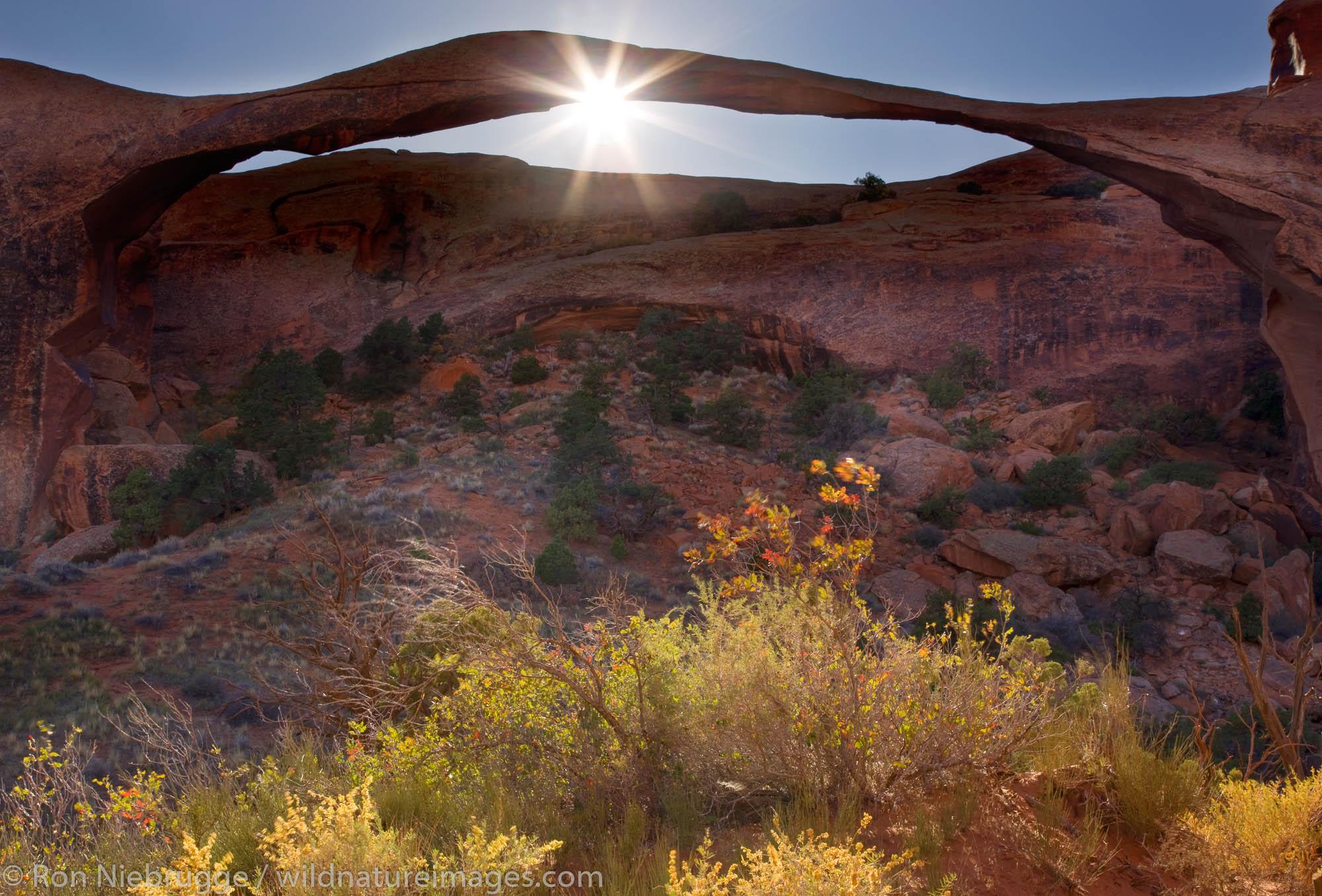 Landscape Arch, Devils Garden, Arches National Park, Moab, Utah.