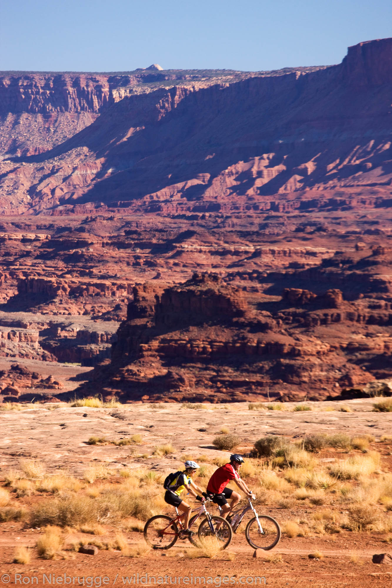 Mountain biking on the White Rim Trail, Island in the Sky District, Canyonlands National Park, near Moab, Utah.