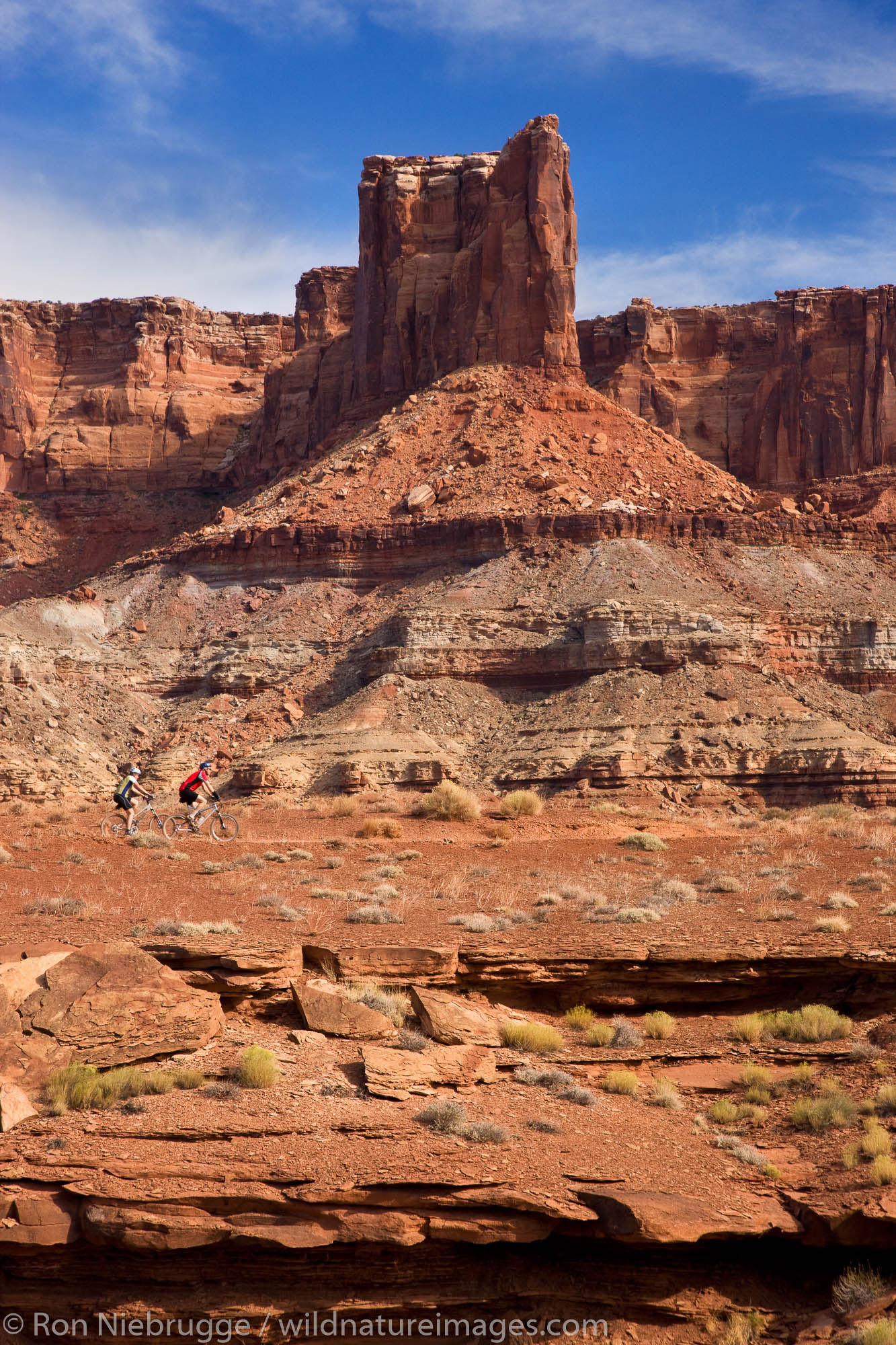 Mountain bikers pass the Labyrinth area along the White Rim Trail, Island in the Sky District, Canyonlands National Park, near...