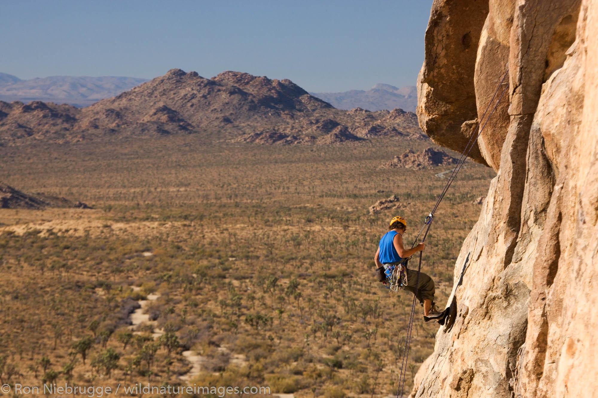 Thomas Vetsch rock climbing in Joshua Tree National Park, California.  (model released)