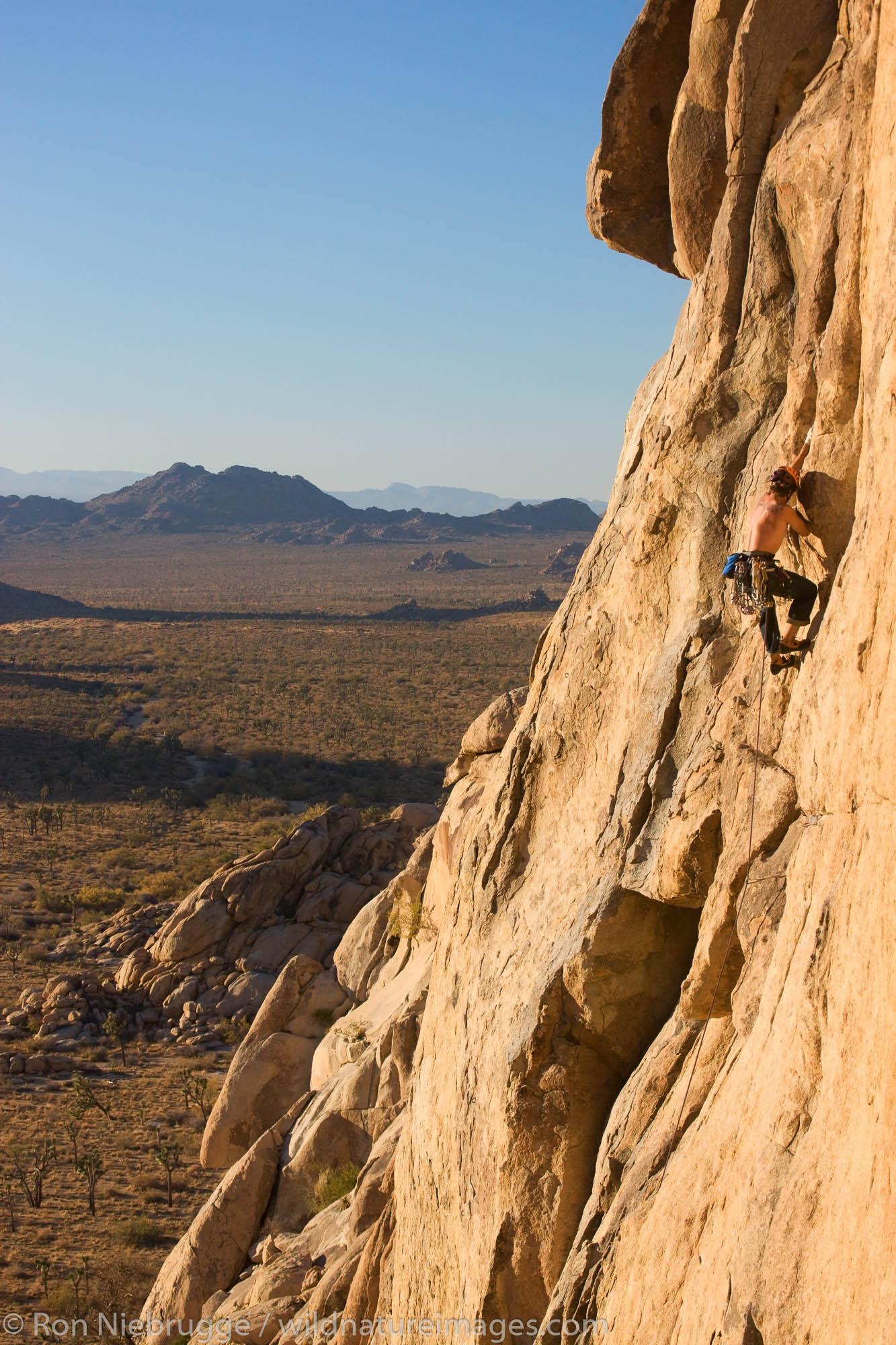 Matt VanBiene rock climbing in Joshua Tree National Park, California.  (model released)