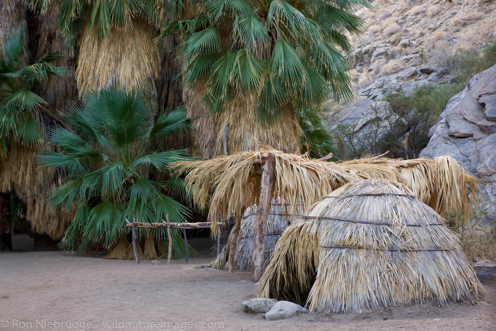 Indian dwellings, Palm Canyon, part of the Indian Canyons in the Agua Caliente Indian Reservation, near Palm Springs, California...