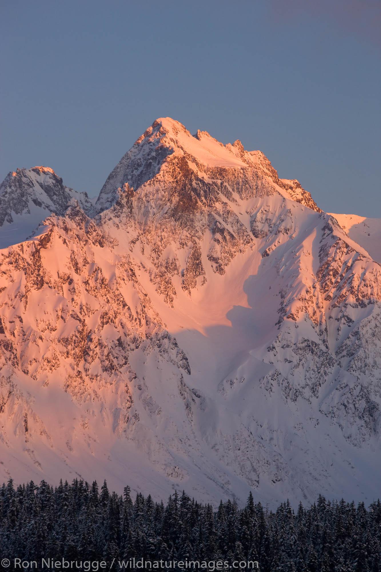 Winter in the Chugach National Forest, Seward, Alaska.