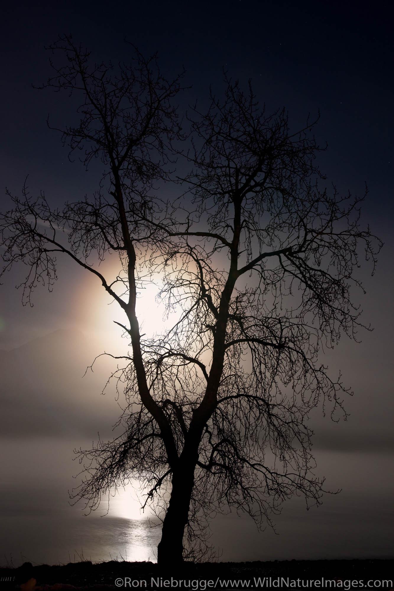 Full moon over Resurrection Bay, Seward, Alaska.