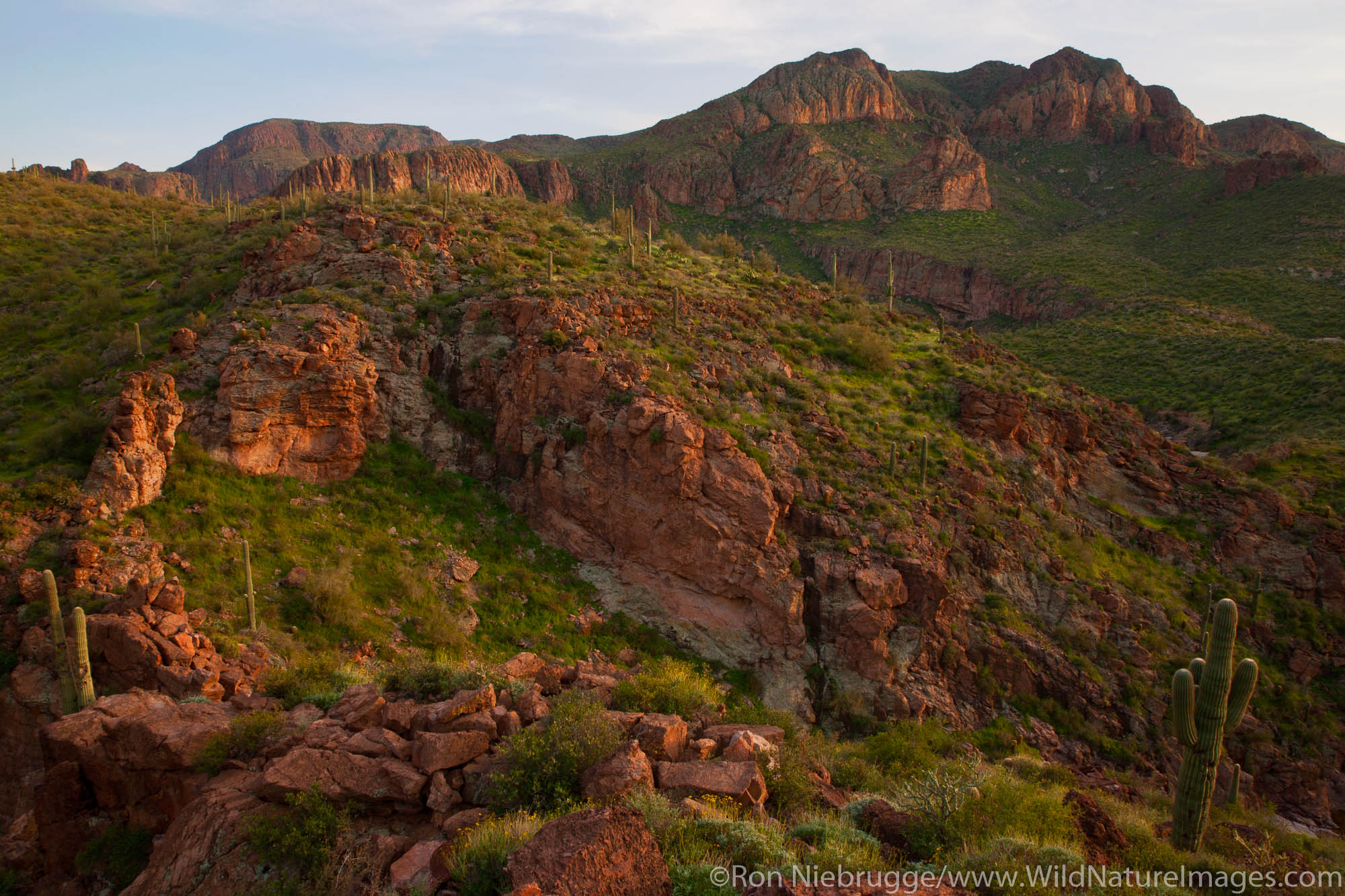 Superstition Mountains along the Apache Trail, Tonto National Forest, East of Phoenix, Arizona.