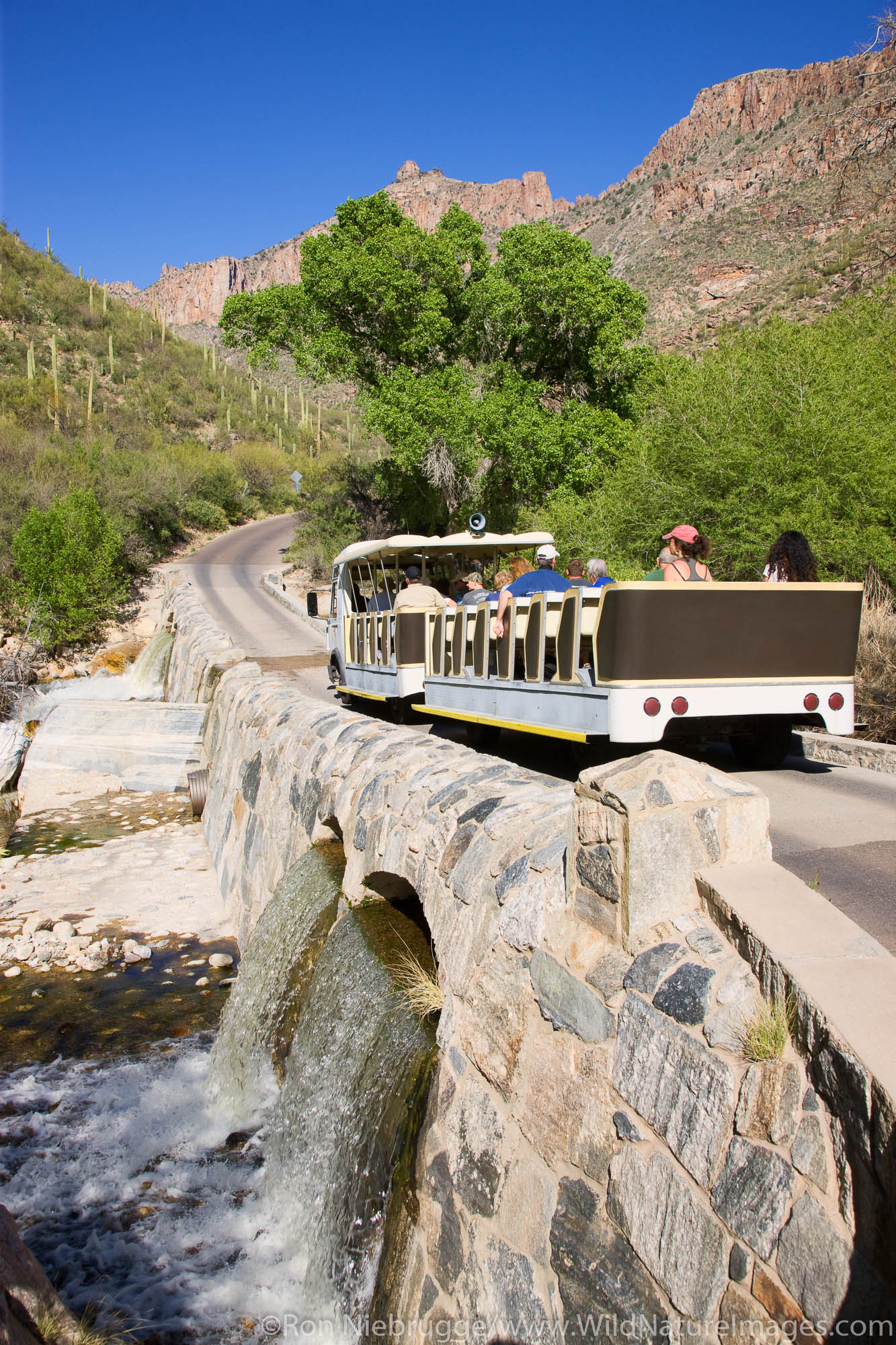 Shuttle crosses Sabino Creek, Sabino Canyon Recreation Area, Tucson, Arizona.