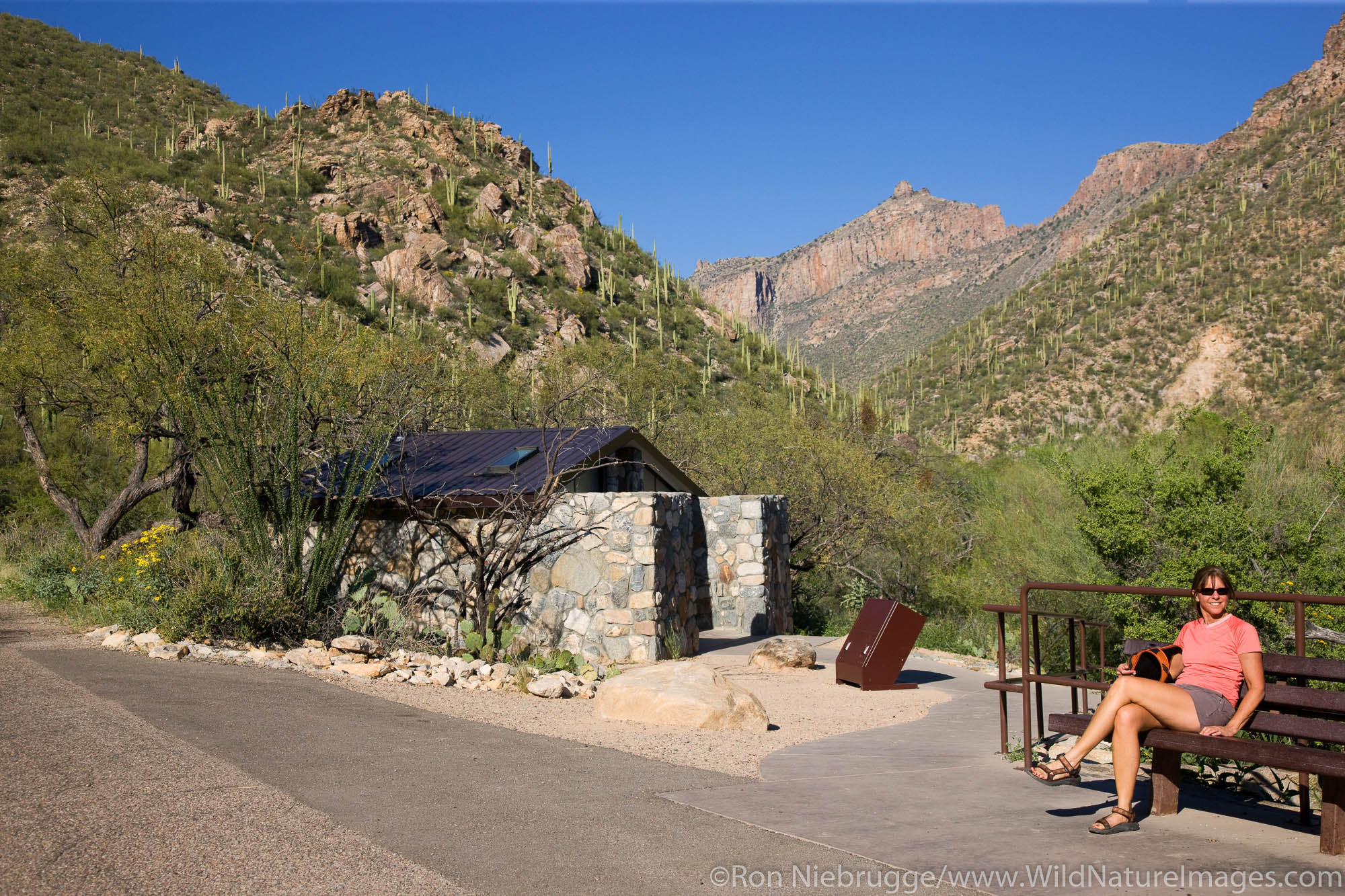 Hiker waits at Shuttle Bus stop #1, Sabino Canyon Recreation Area, Tucson, Arizona.  (model released)