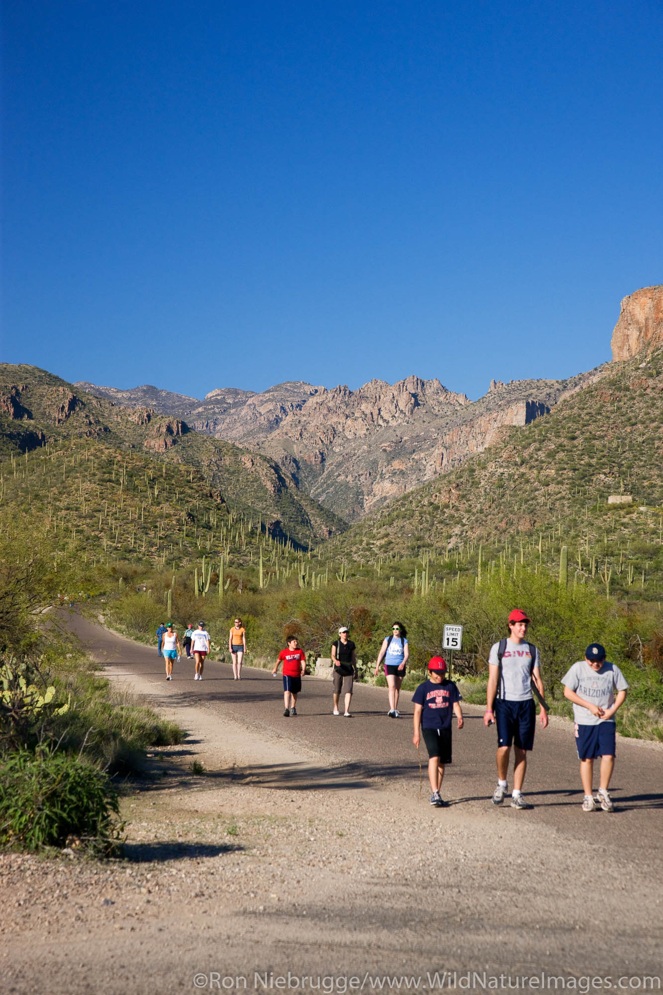 Hikers in Sabino Canyon Recreation Area, Tucson, Arizona.