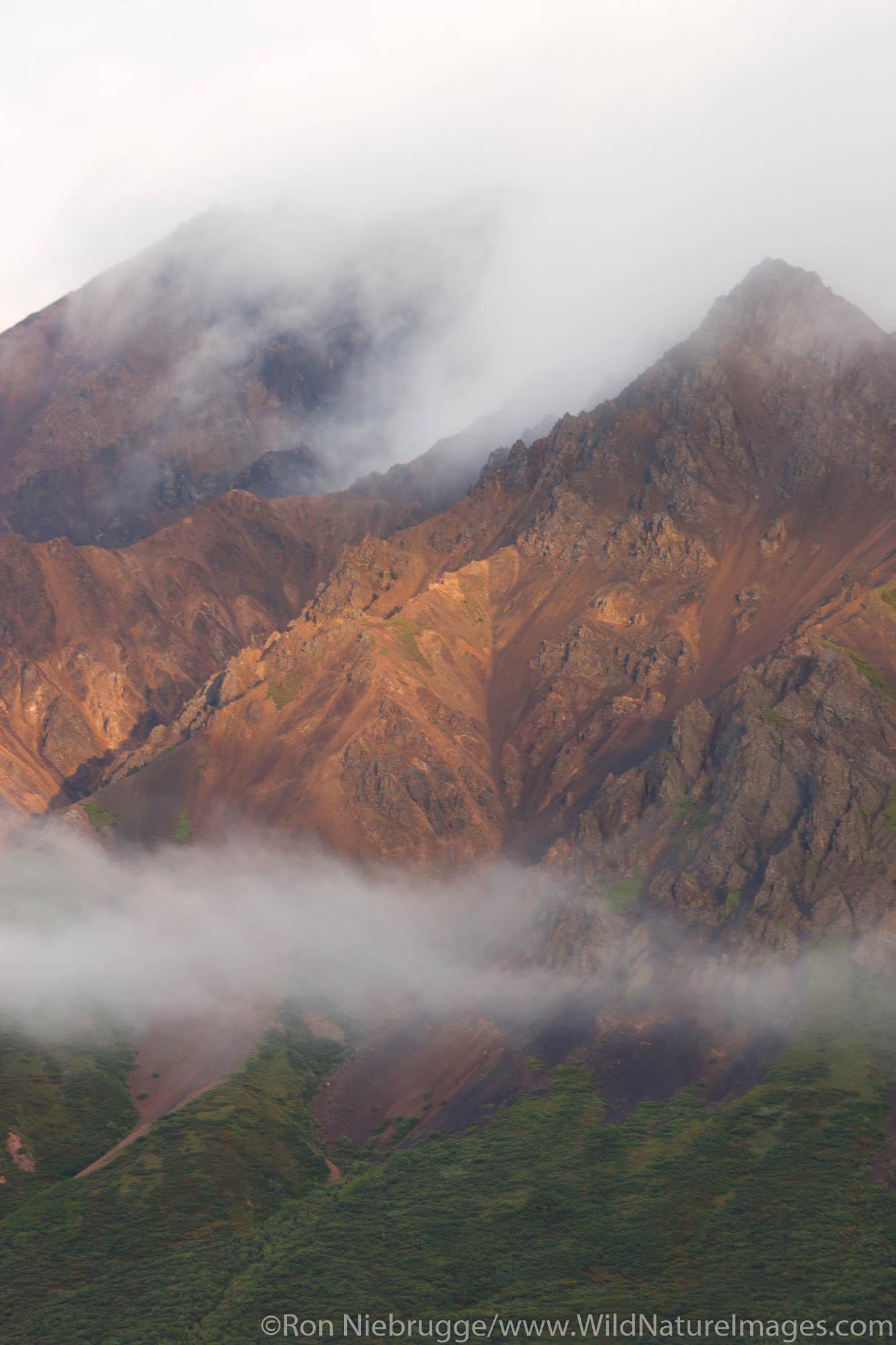Stormy weather, Denali National Park, Alaska.