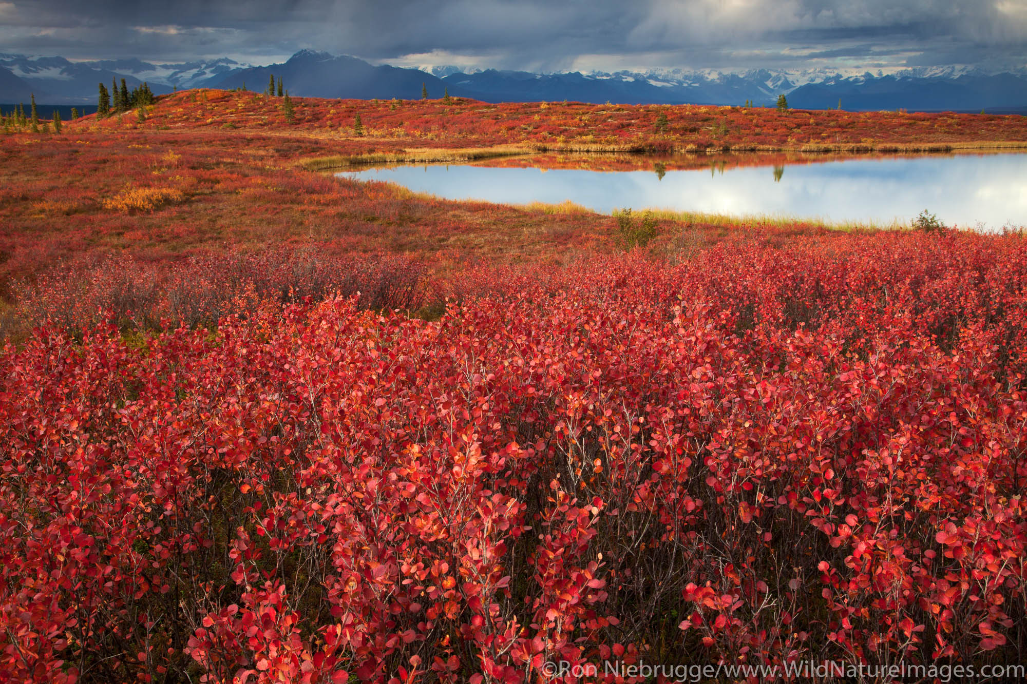 Denali Highway, Alaska.