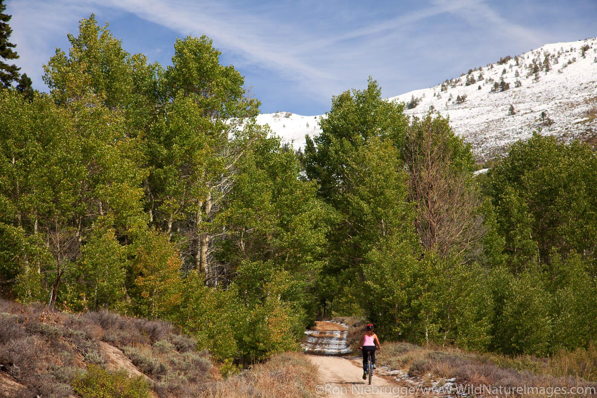 Mountain biking on the Flume Trail, Lake Tahoe, NV (model released)