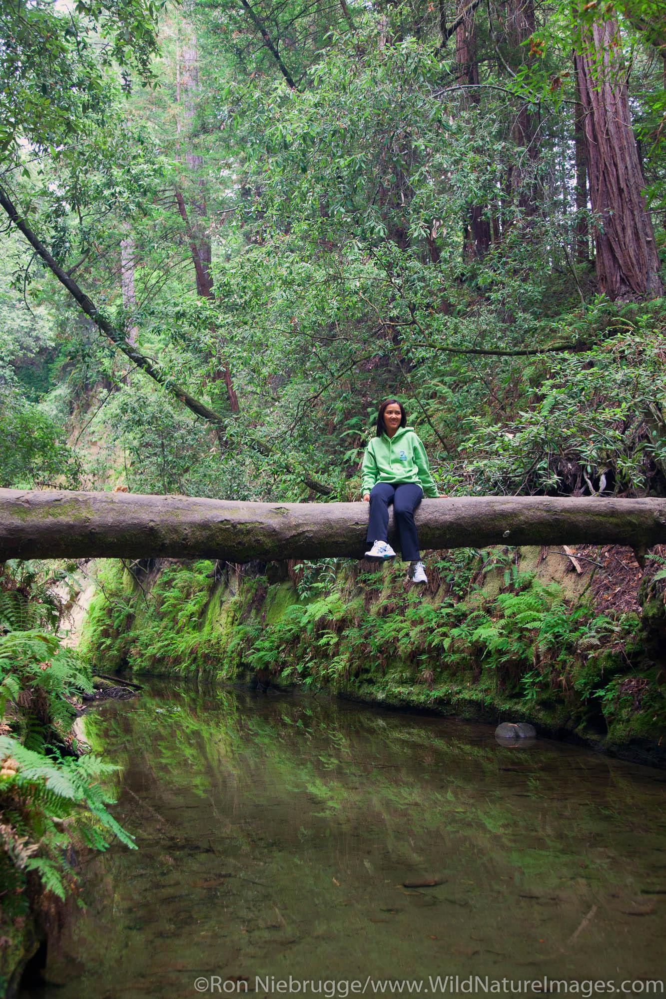 Hiking in The Forest of Nisene Marks State Park, Aptos, California.  (Model Released)