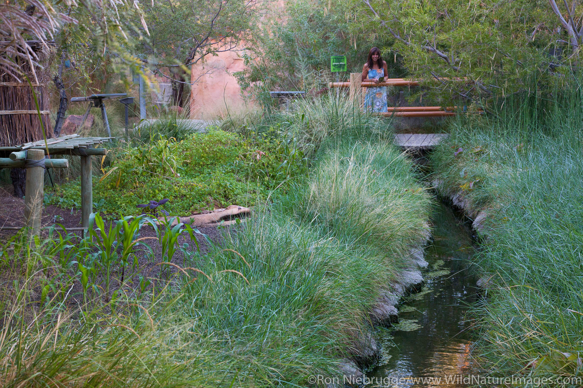 Springs Preserve, Las Vegas, Nevada