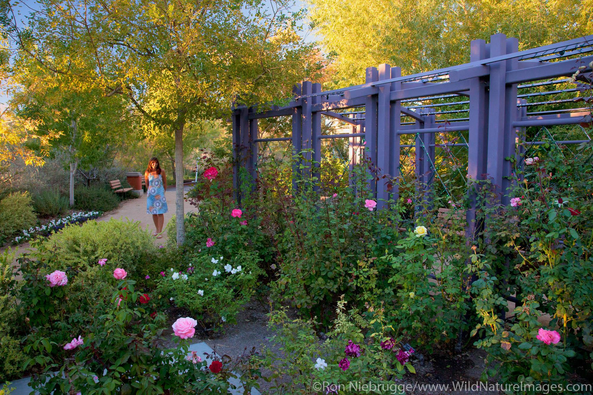 The Gardens at Springs Preserve, Las Vegas, Nevada (model released)