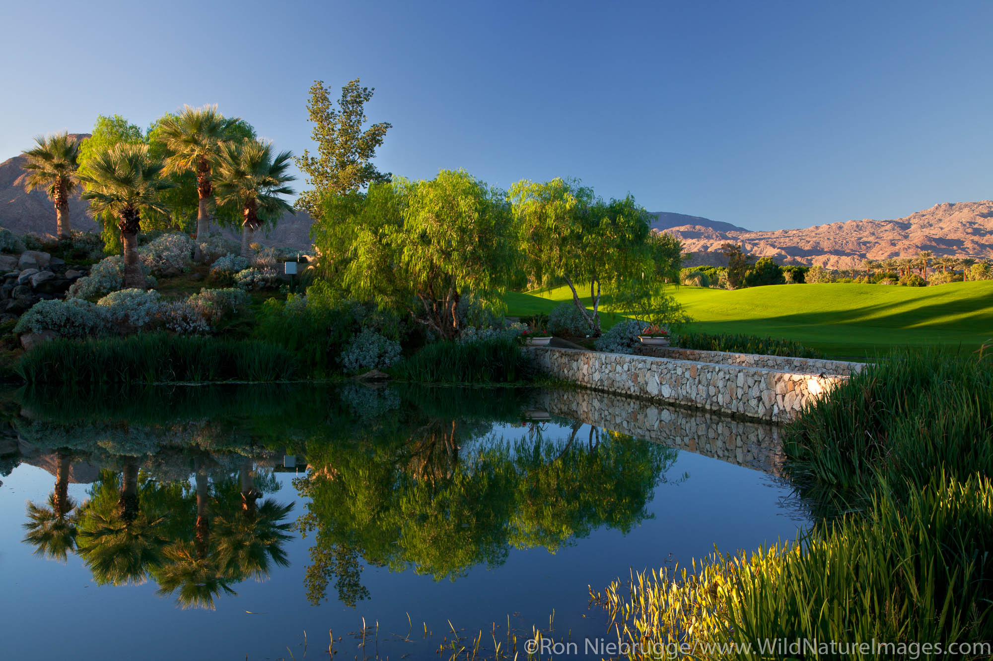 Palm Springs, California, Indian Wells , photo