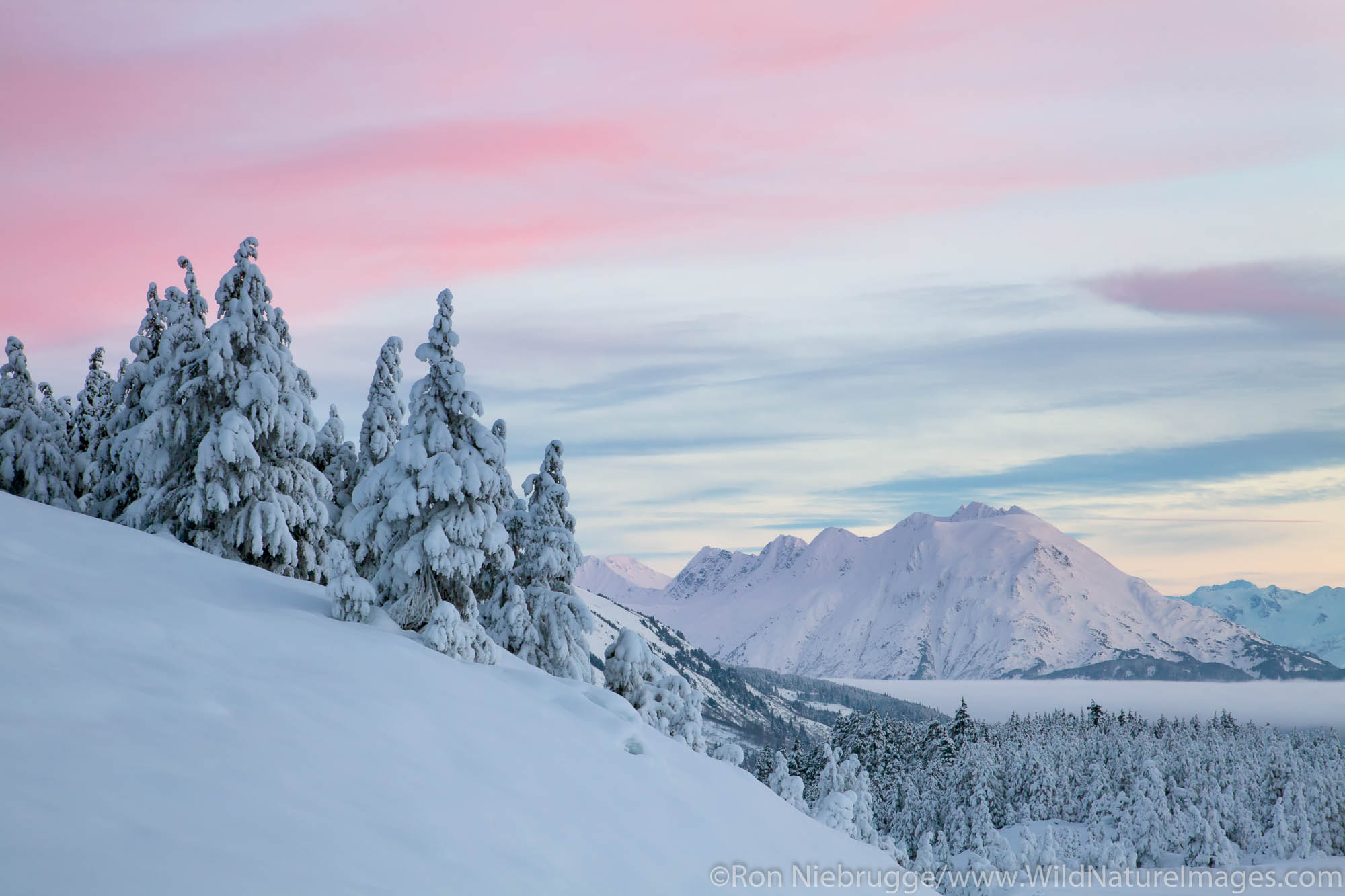 Chugach National Forest, Alaska Chugach, Turnagain Pass in Winter, photo