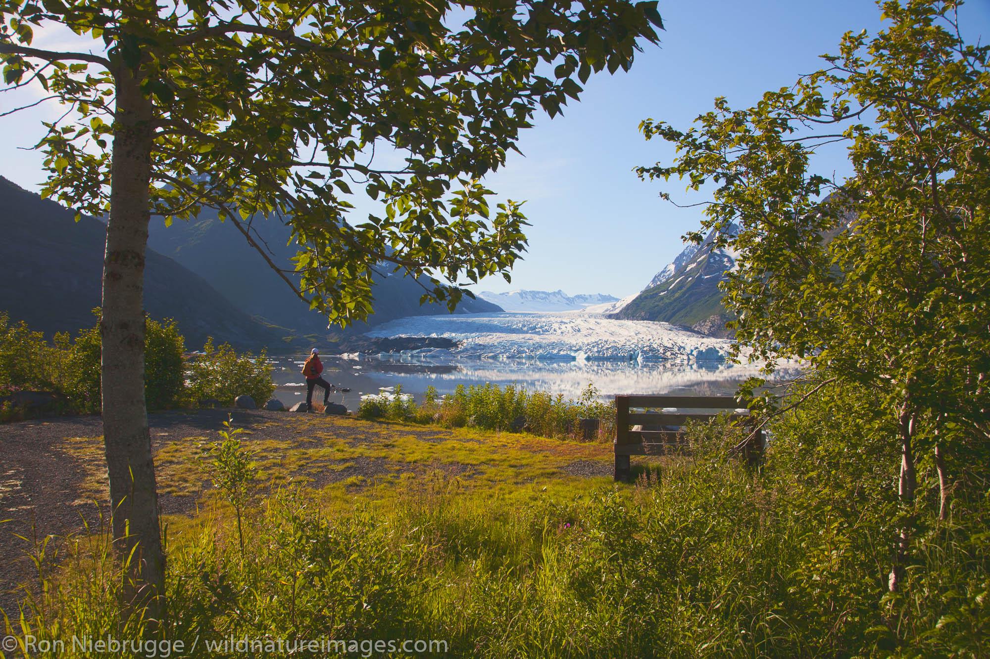 The trail along the lake to Spencer Glacier, Chugach National Forest, Alaska.