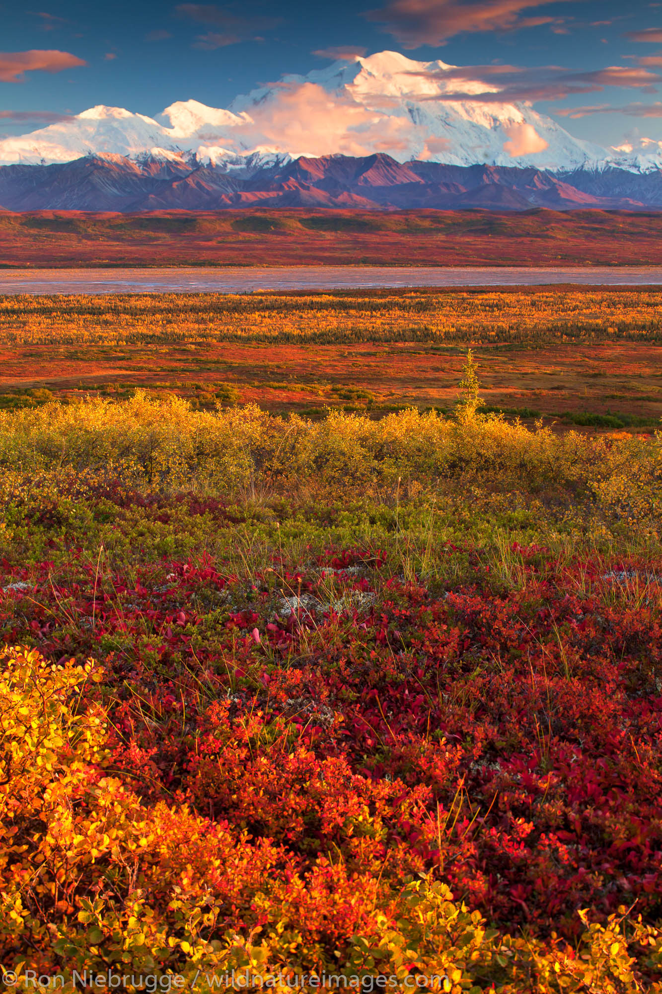 Mt. McKinley or Denali, Denali National Park, Alaska.