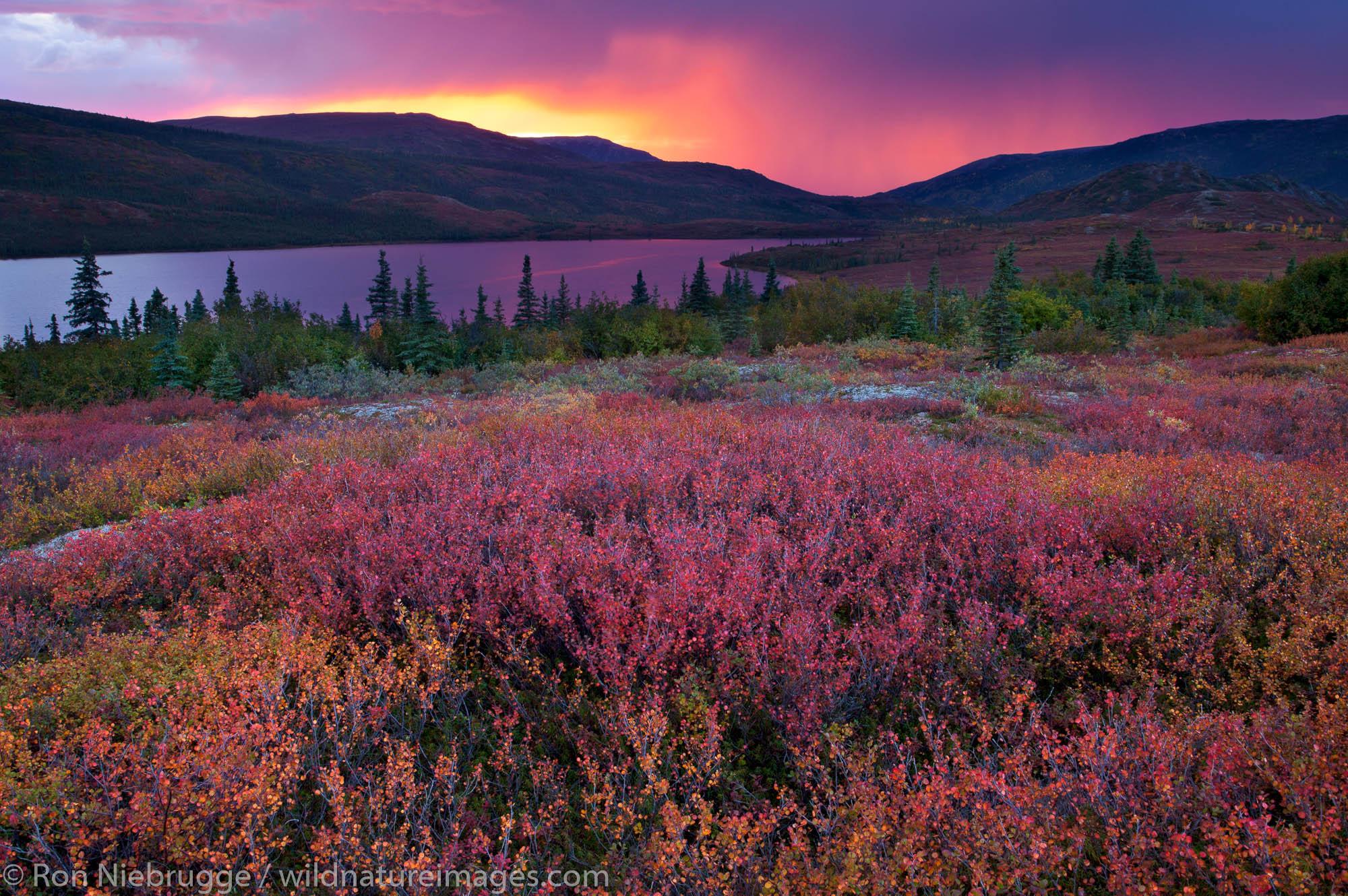Sunset over Wonder Lake, Denali National Park, Alaska.