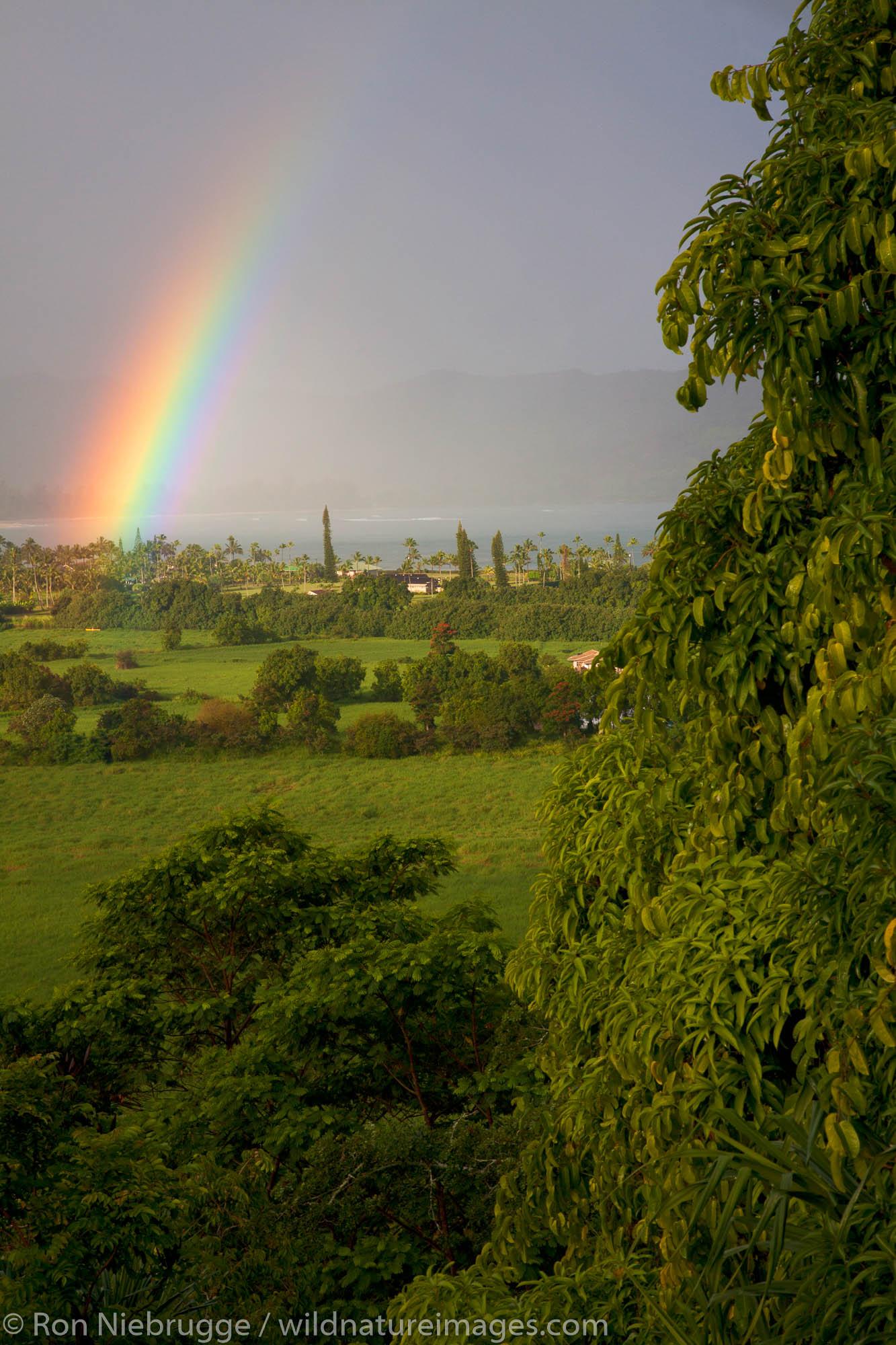 Rainbow over Hanalei Bay, Kauai, Hawaii.