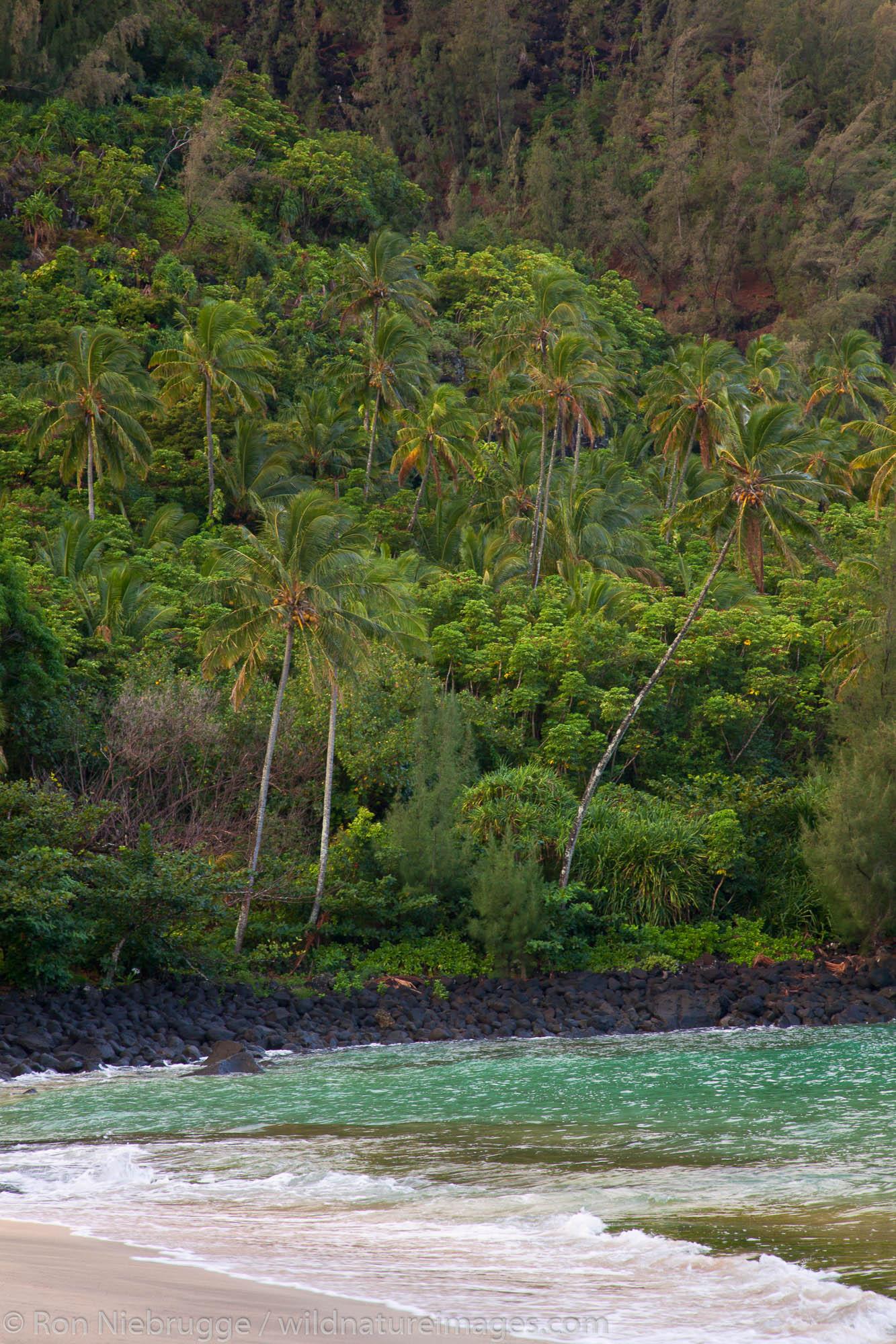 Ke'e Beach at the beginning of the Na Pali Coast, Kauai, Hawaii.