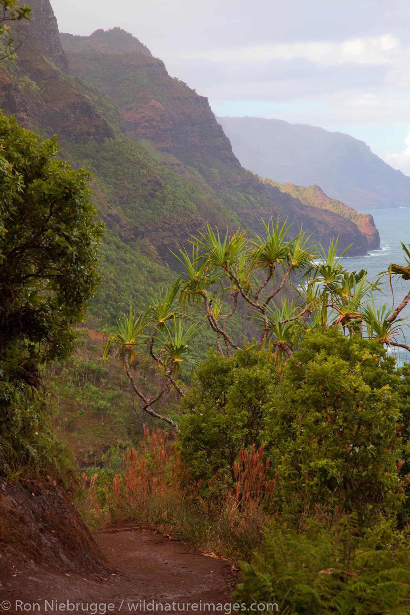 Na Pali Coast from the Kalalau Trail, Kauai, Hawaii.