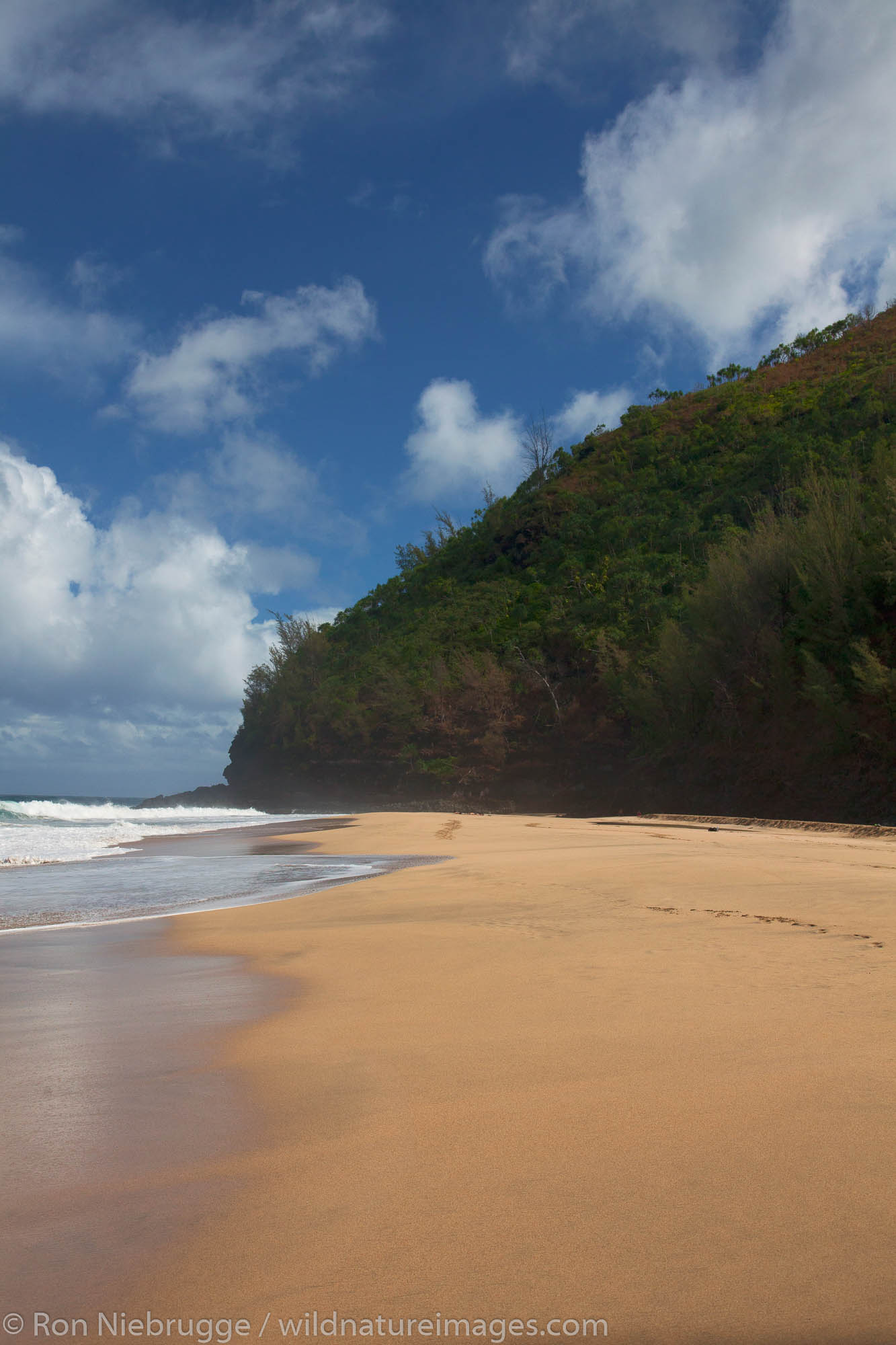 Hanakapi'ai Beach and the Na Pali Coast from the KalalauTrail, Kauai, Hawaii.