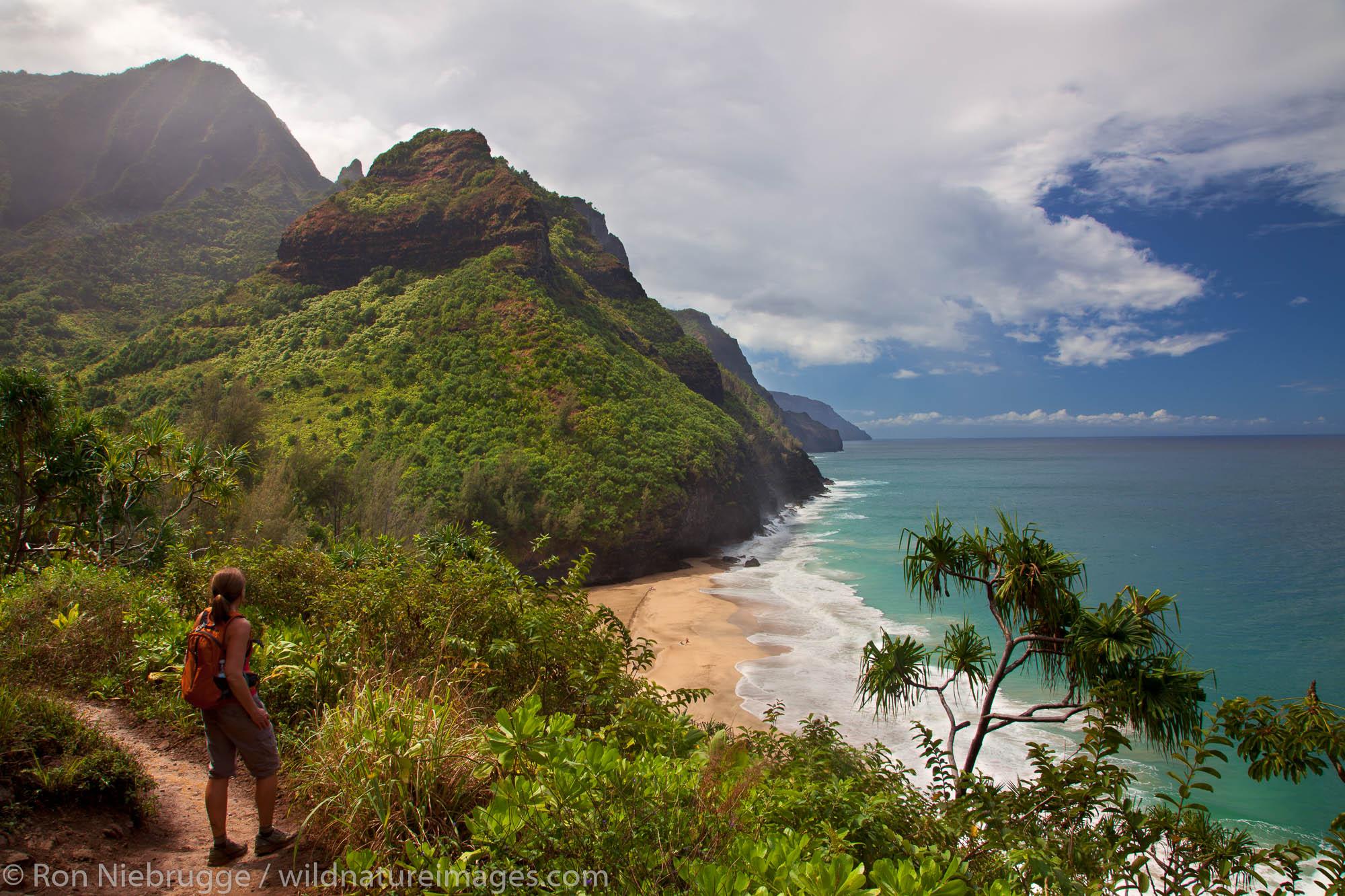 Hiker looks out to the Na Pali Coast from the Kalalau Trail near Hanakapi'ai Beach, Kauai, Hawaii. (Model Released)